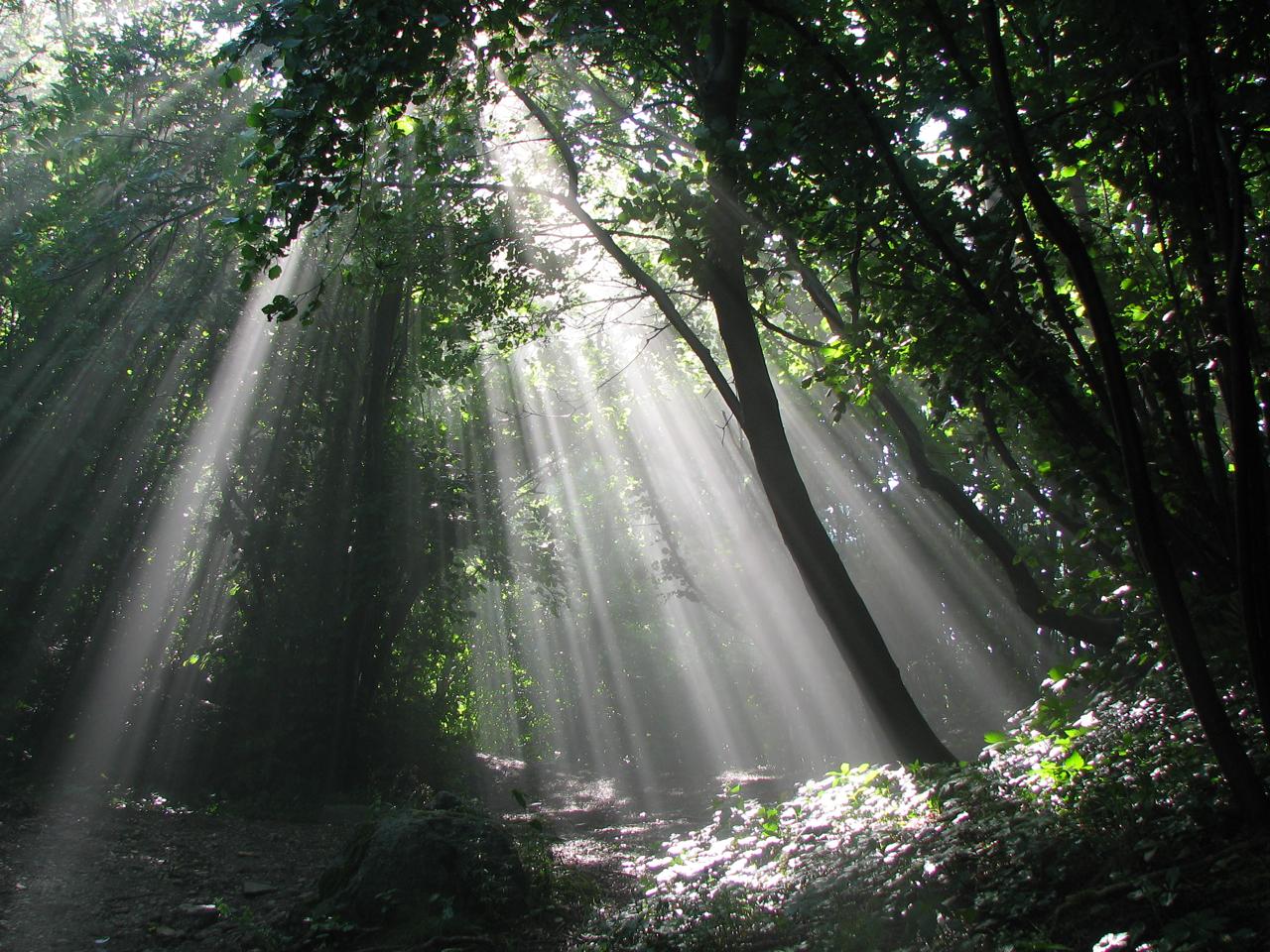 raggi di luce...