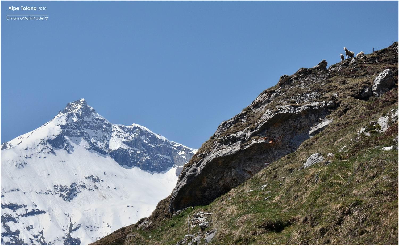 Alpe Toiana...