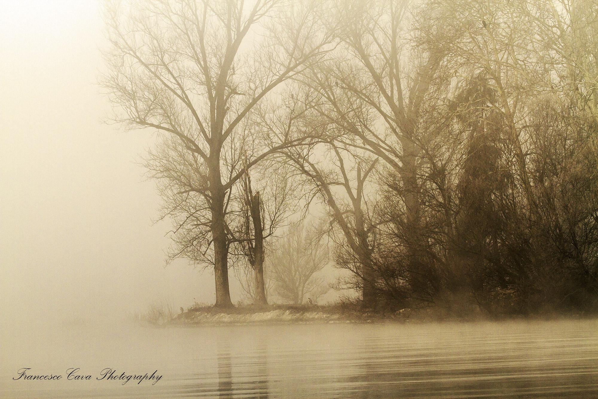 In the fog .........