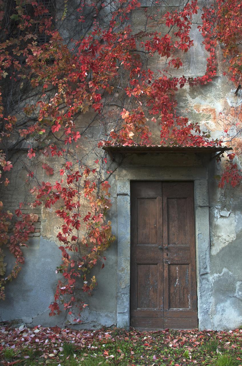 la porta...