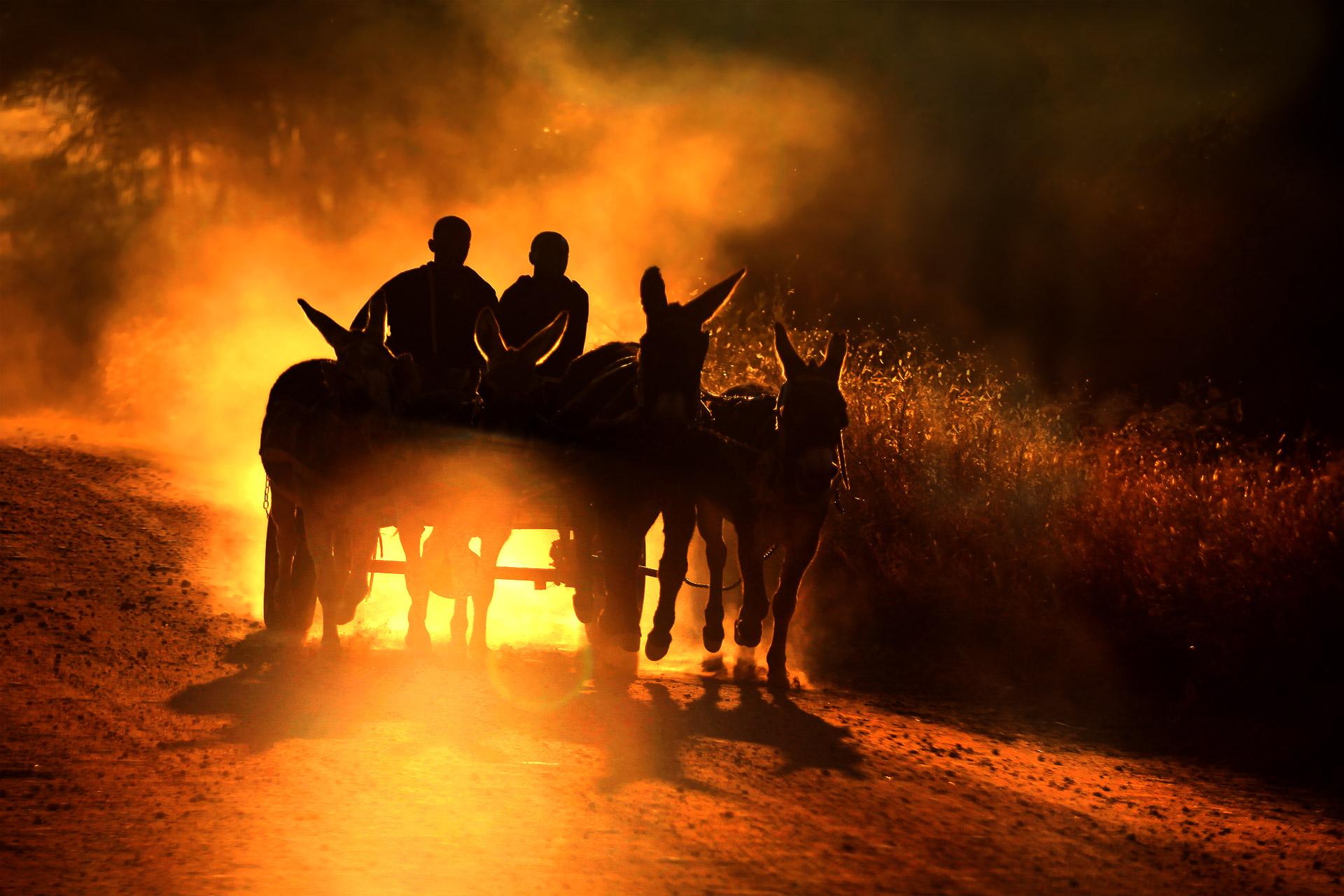 Namibian local transport...