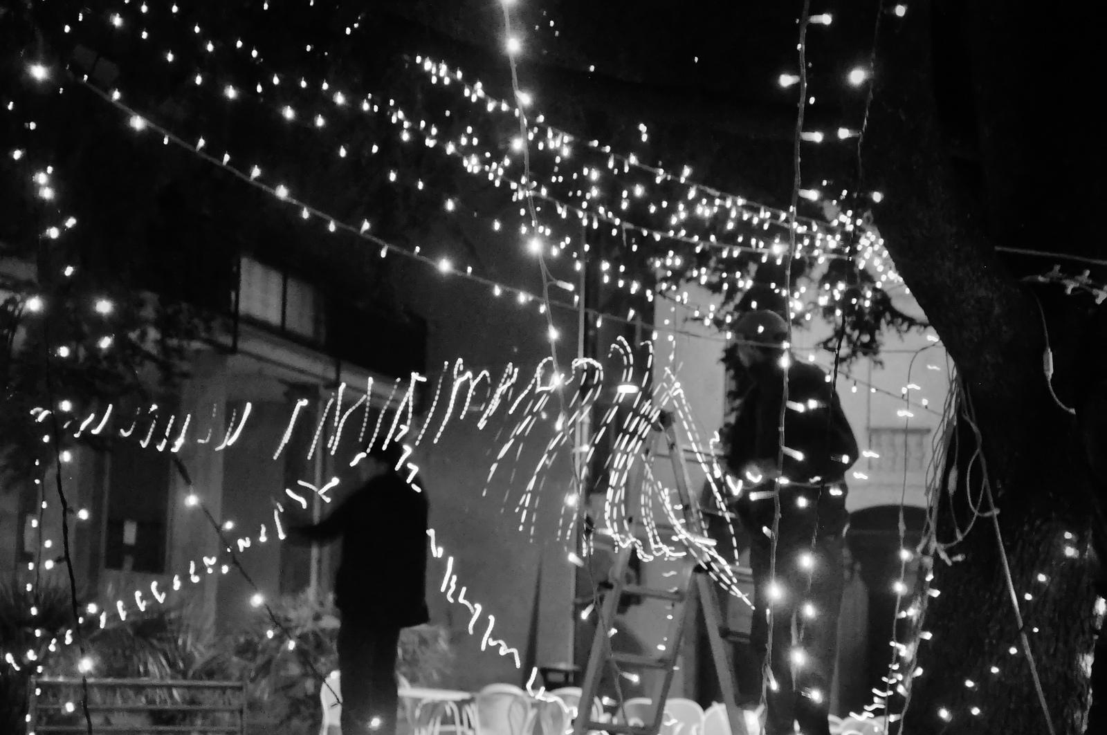 Christmas Lights...