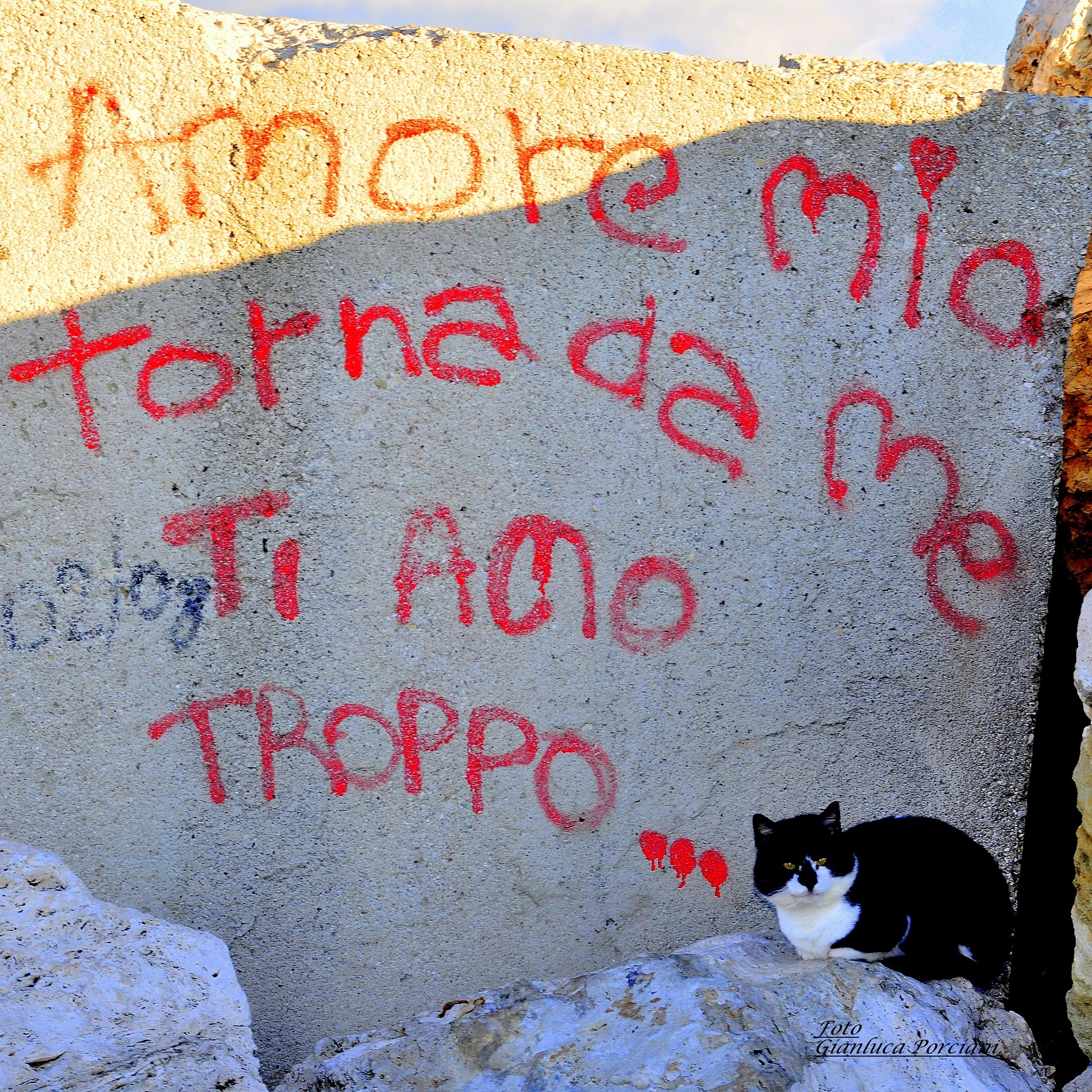 Manifesto d'amore...