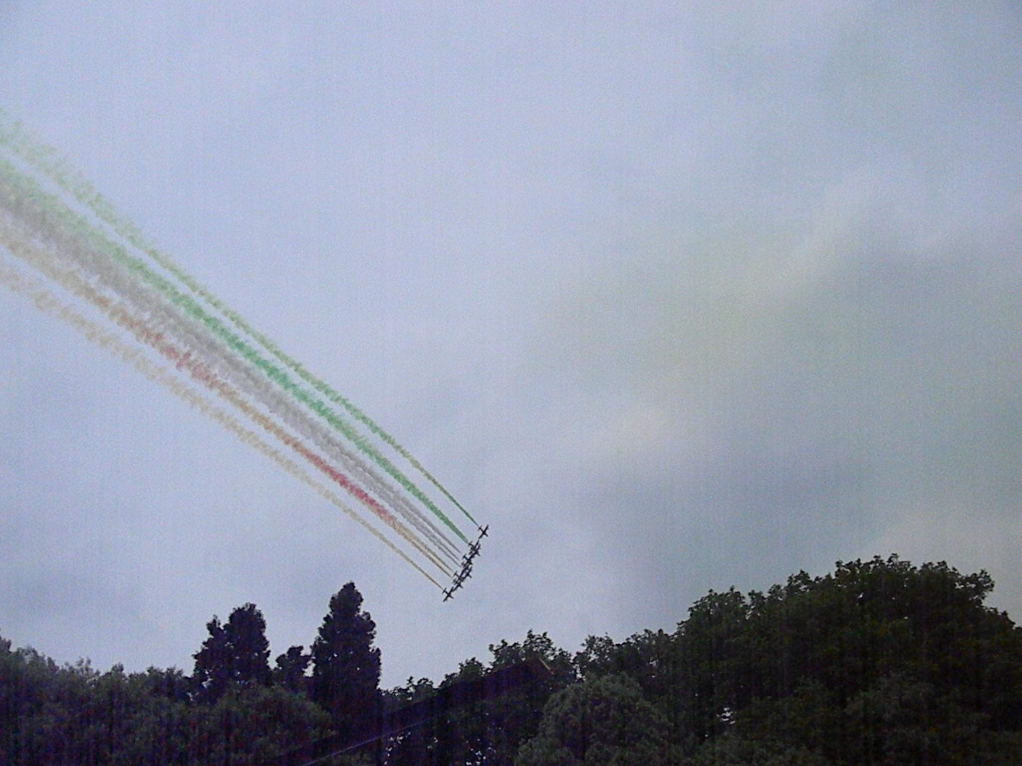 Arrows tricolor (Pordenone)...