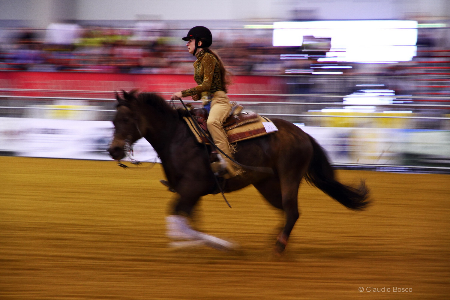 Reining and Panning...
