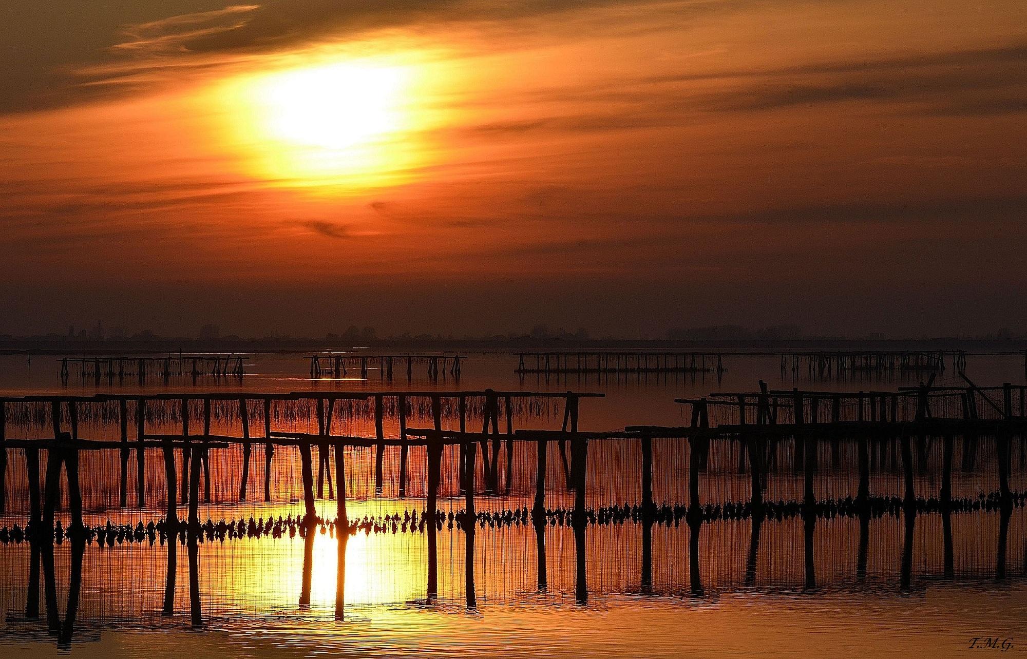 Sunset on nurseries in the Po Delta...