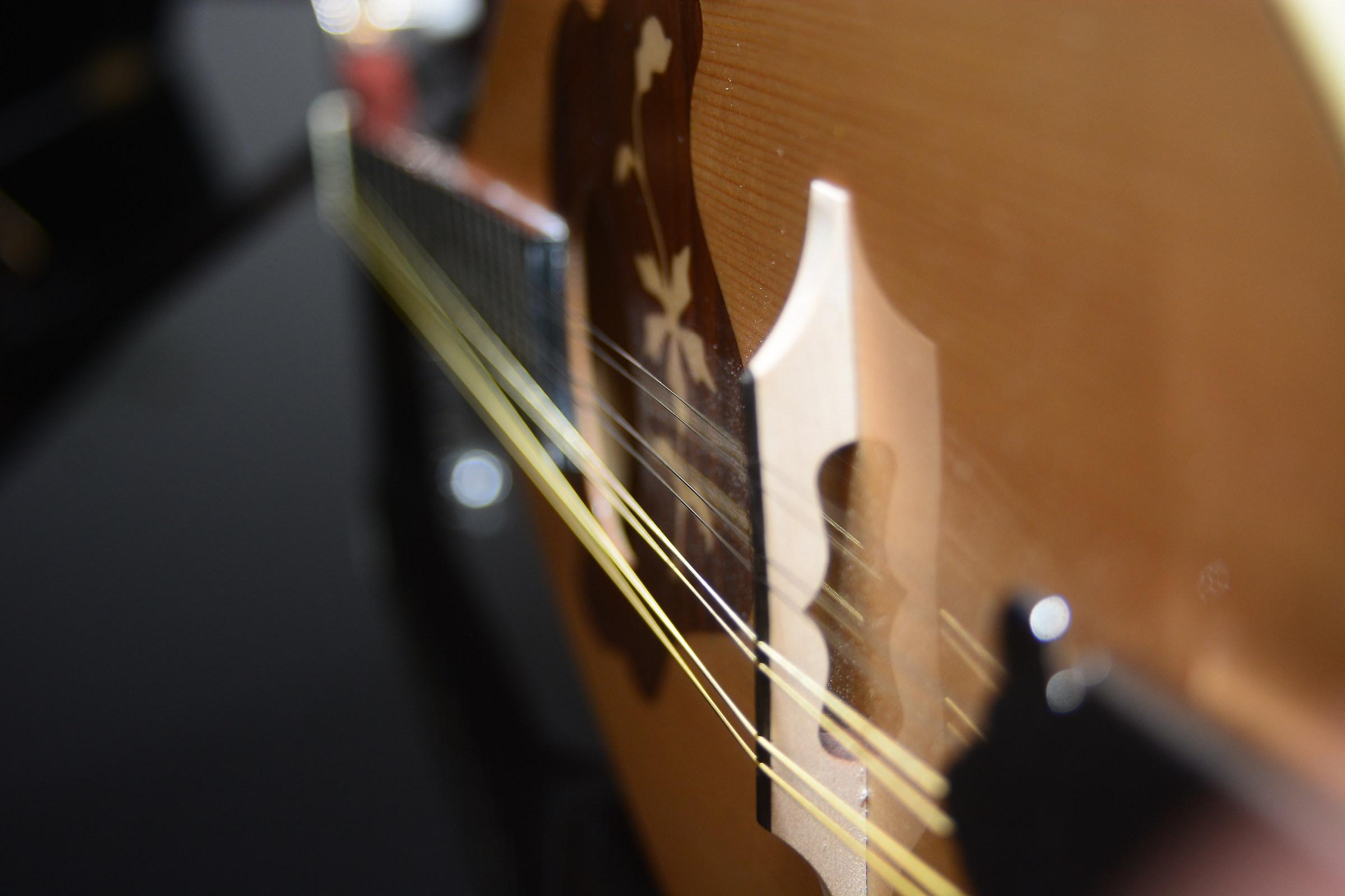 Il magnifico mandolino.....