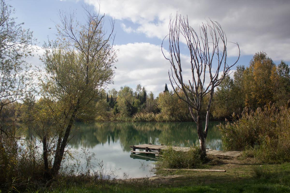 Lake Field...