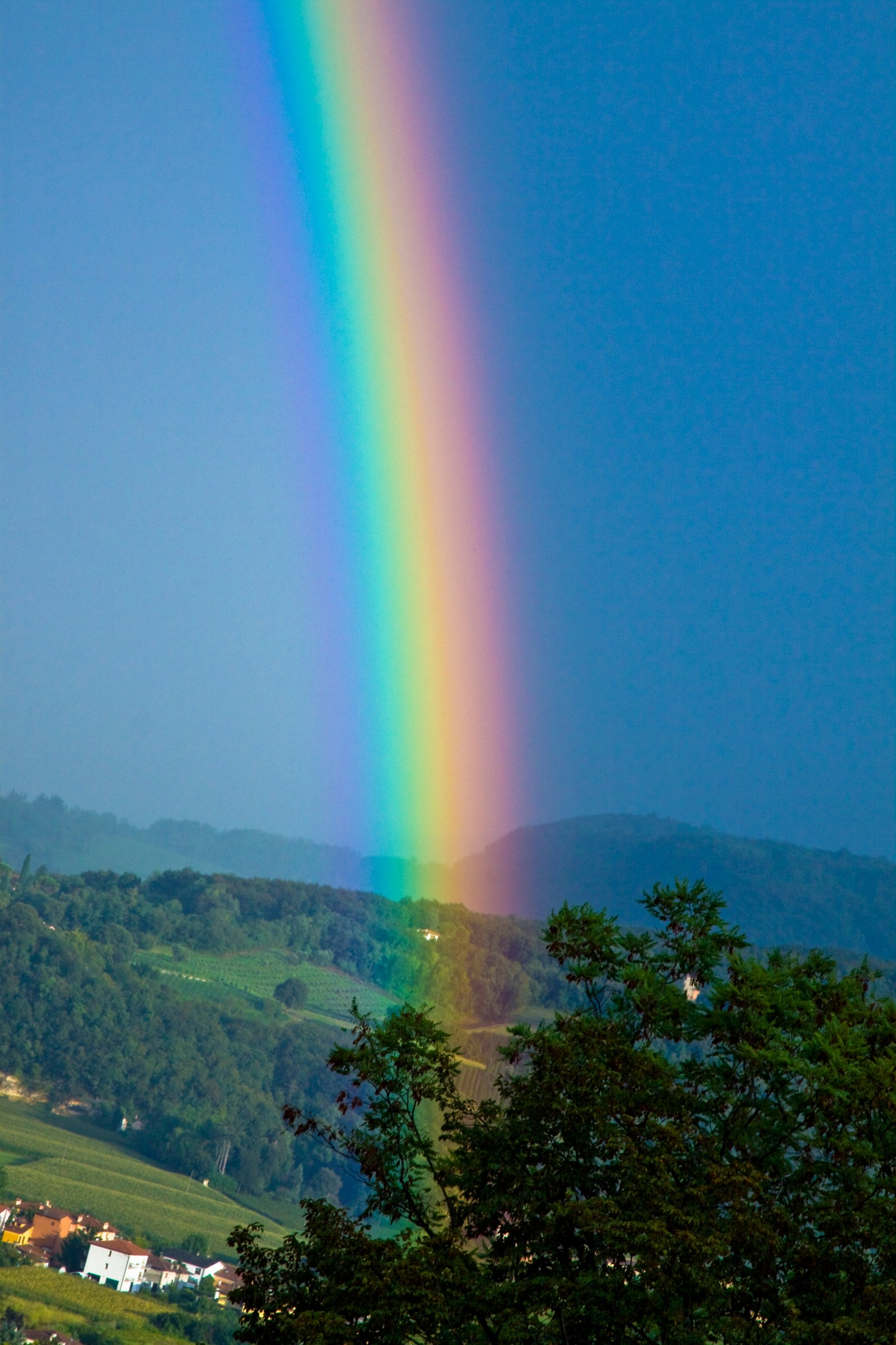 Search the pot of gold where does the rainbow...