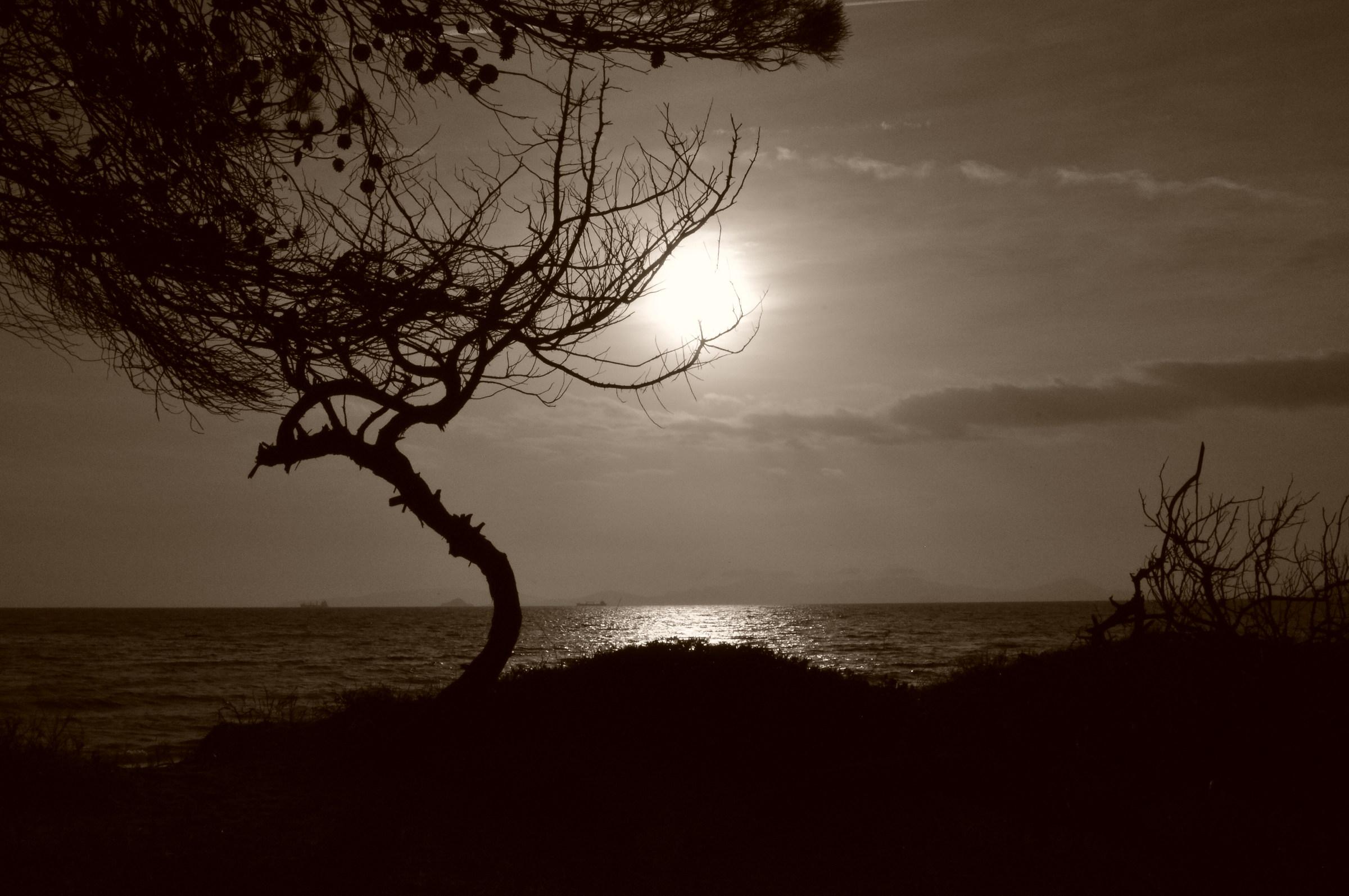 Winter sea....