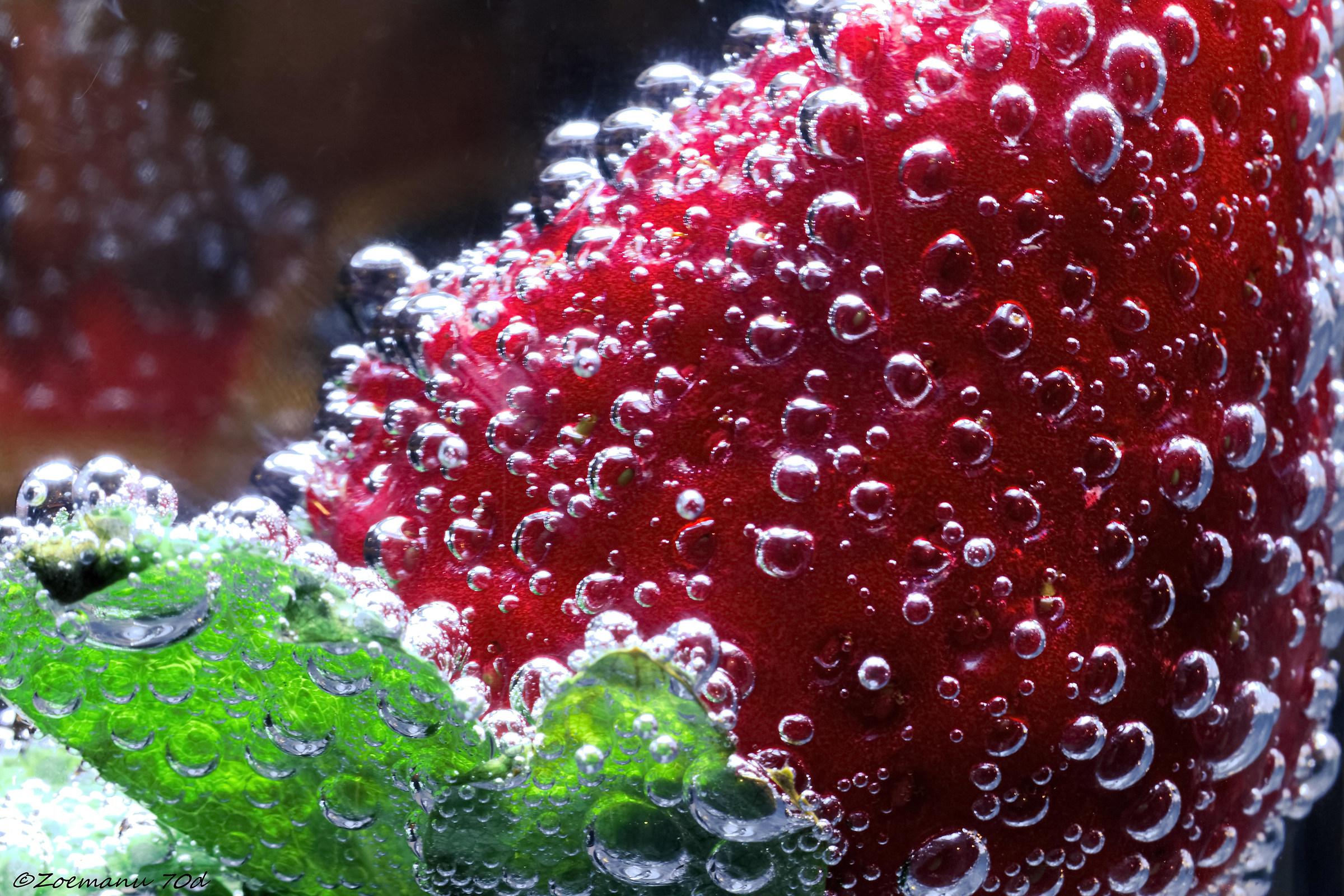 macro bubbles...