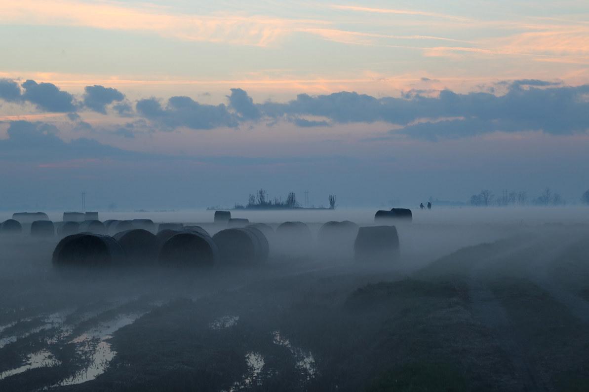the fog rolls...