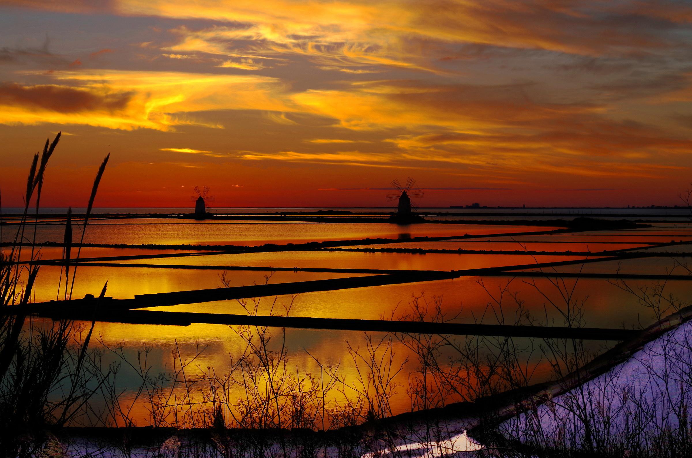 the salt marshes...
