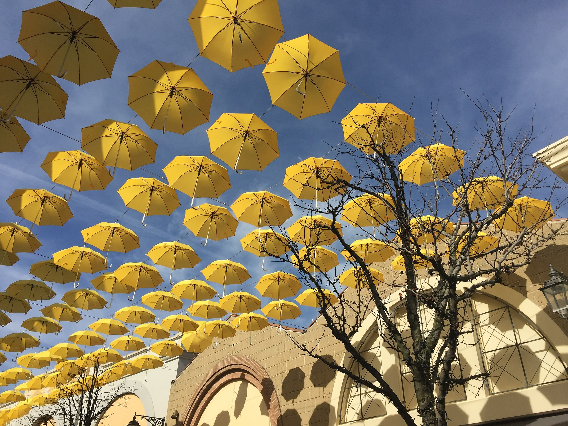 Umbrella in the Sky...