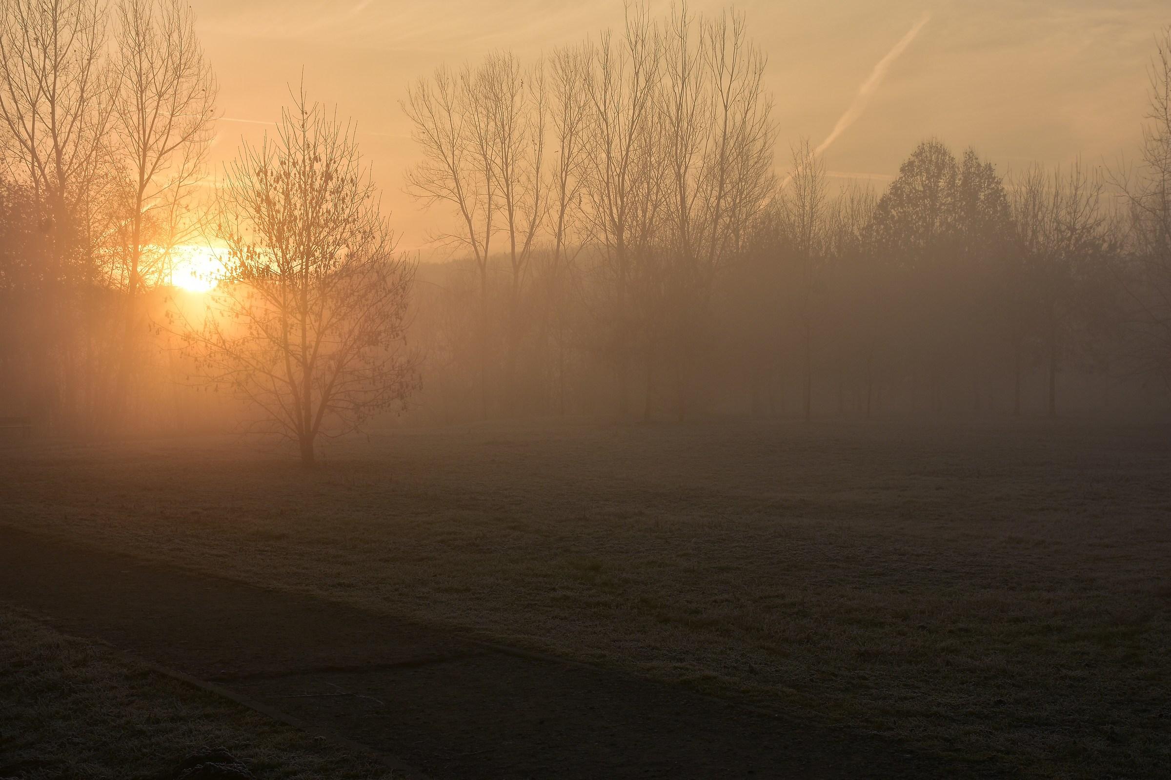 sunrise on the river Po...