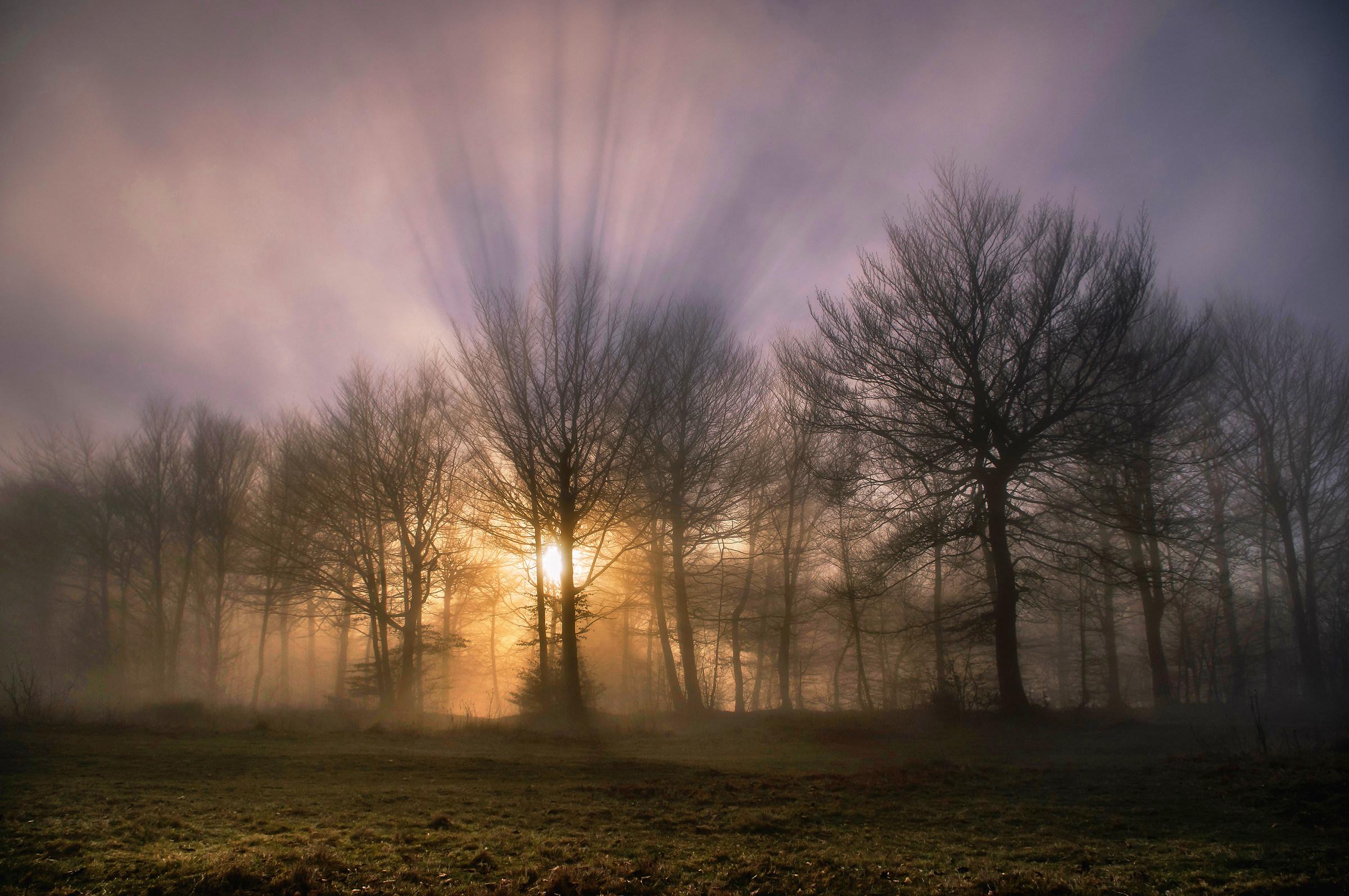 Magic of Nature...