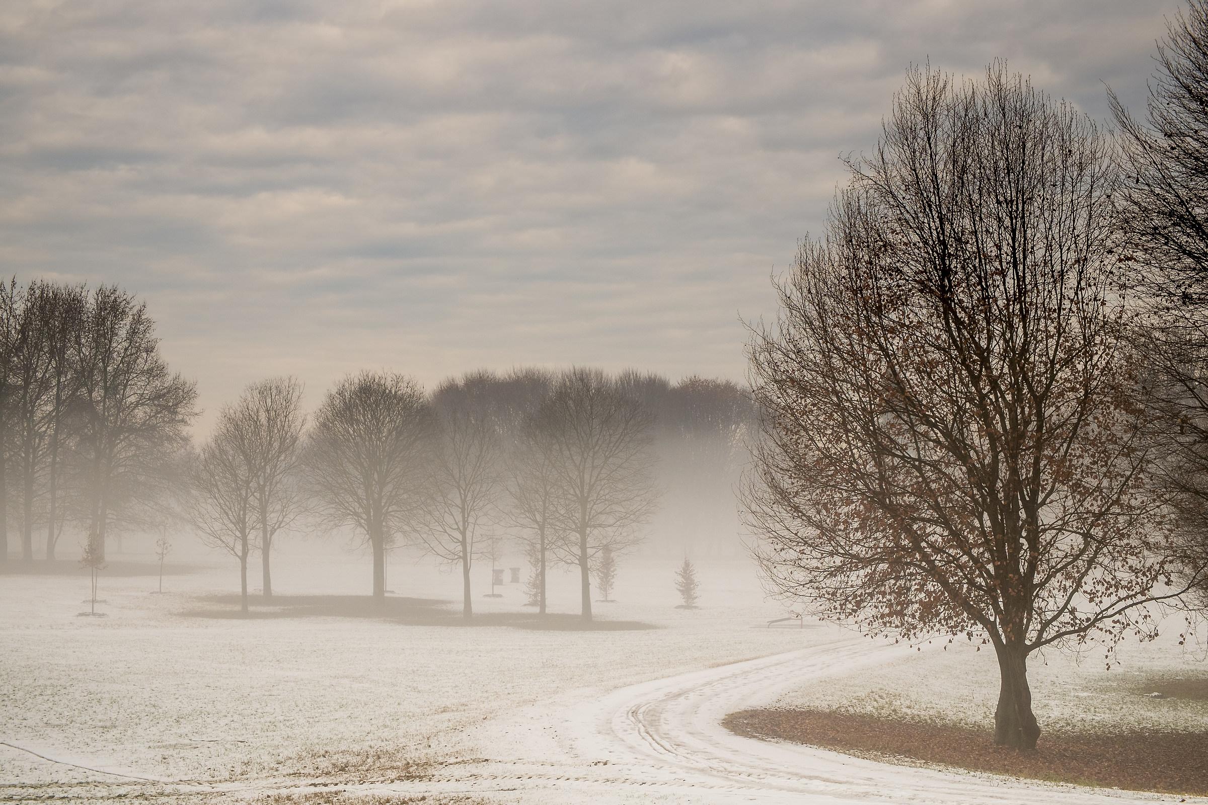 atmosfera invernale in citta'...