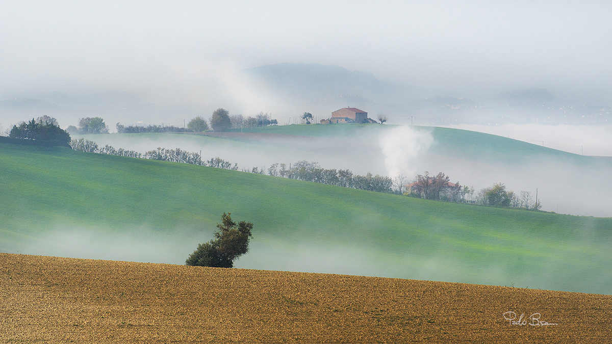 Spring Mists...