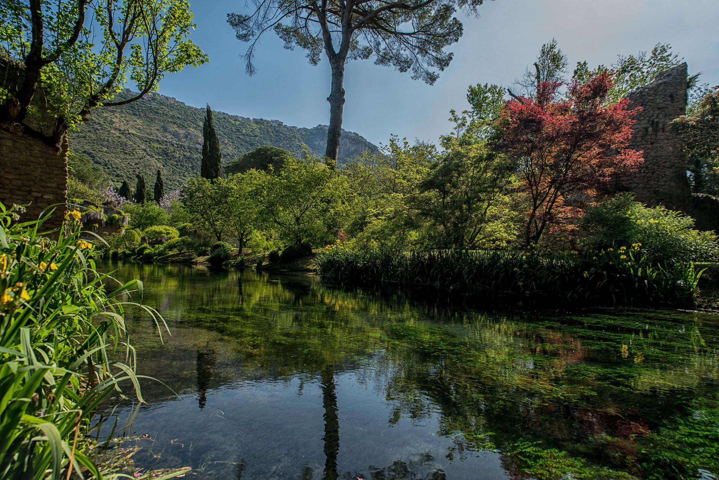 Giardini di Ninfa 1...