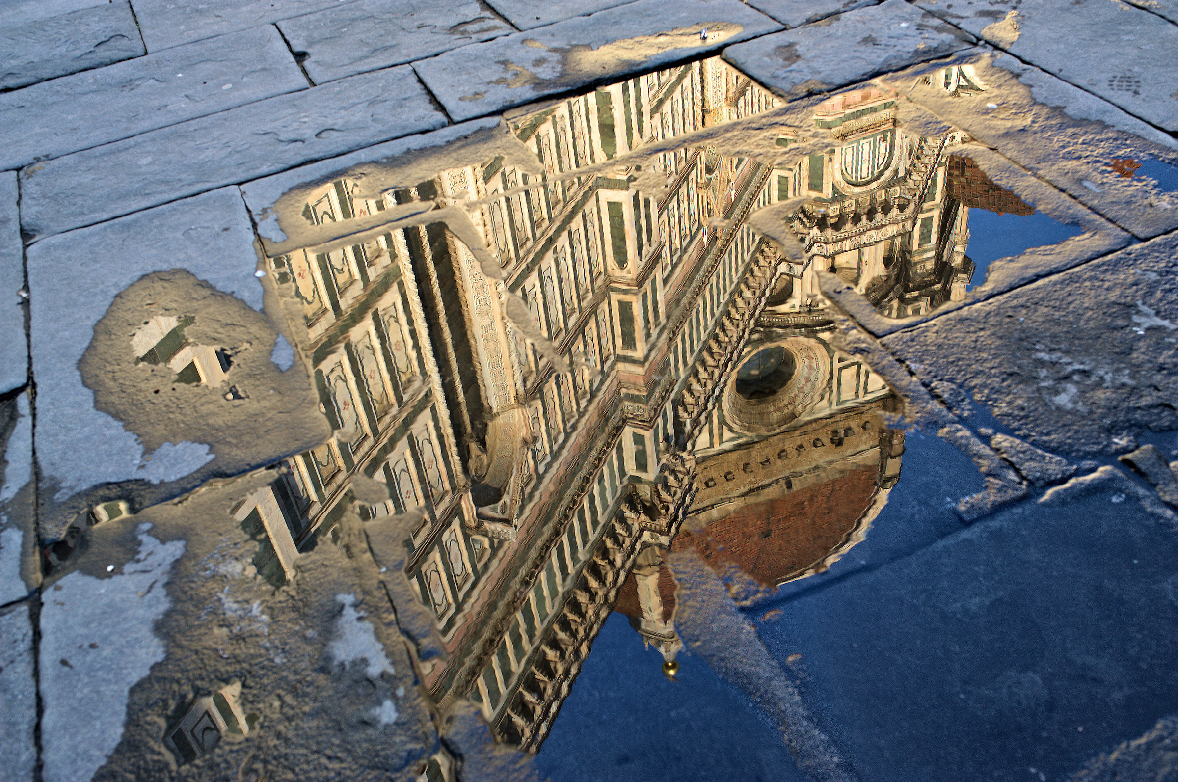 observing through the puddles...