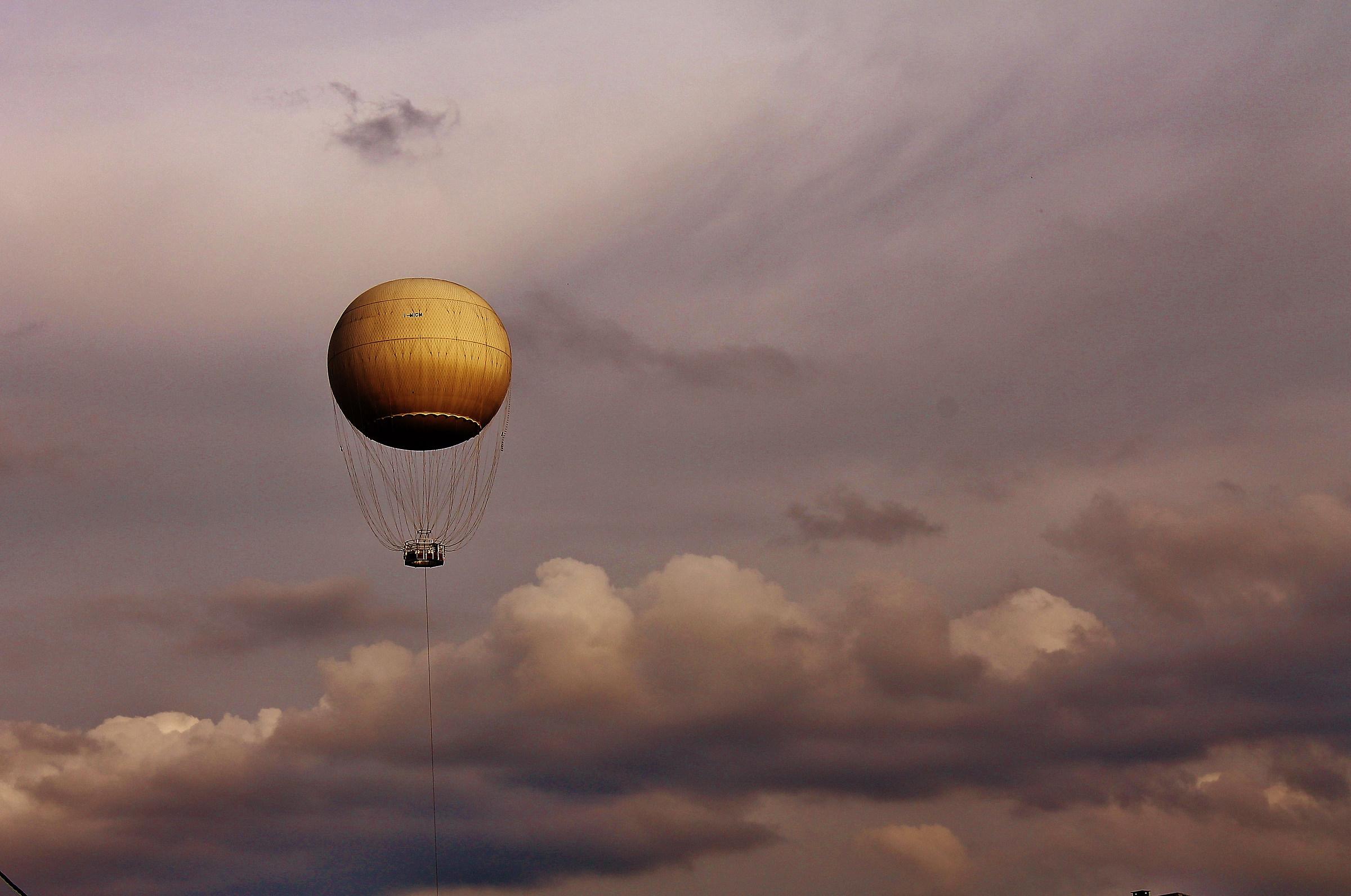 Gliding in the sky...