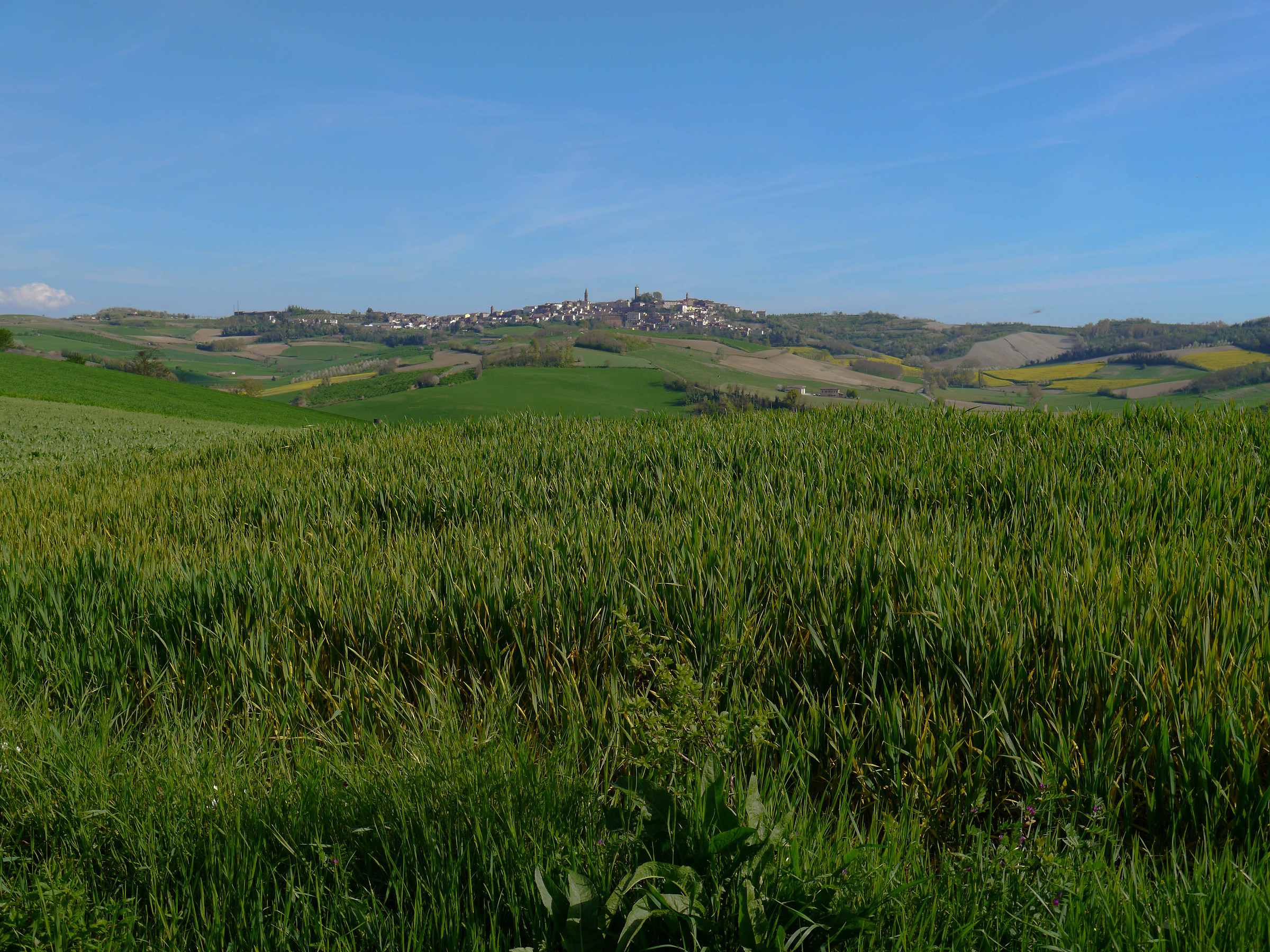 Lu Monferrato...