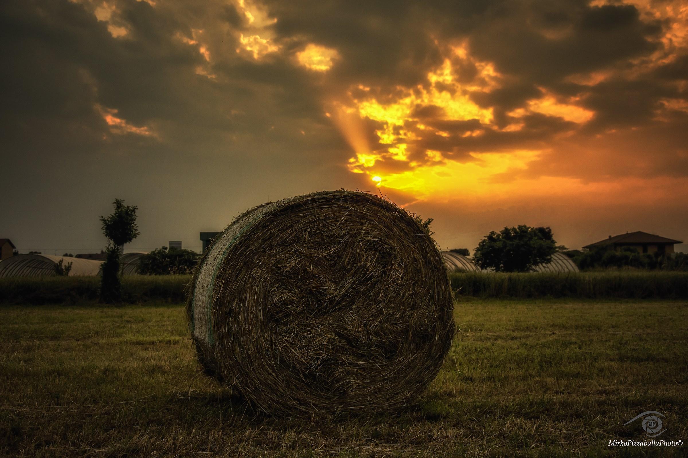 tramonto tra il fieno...