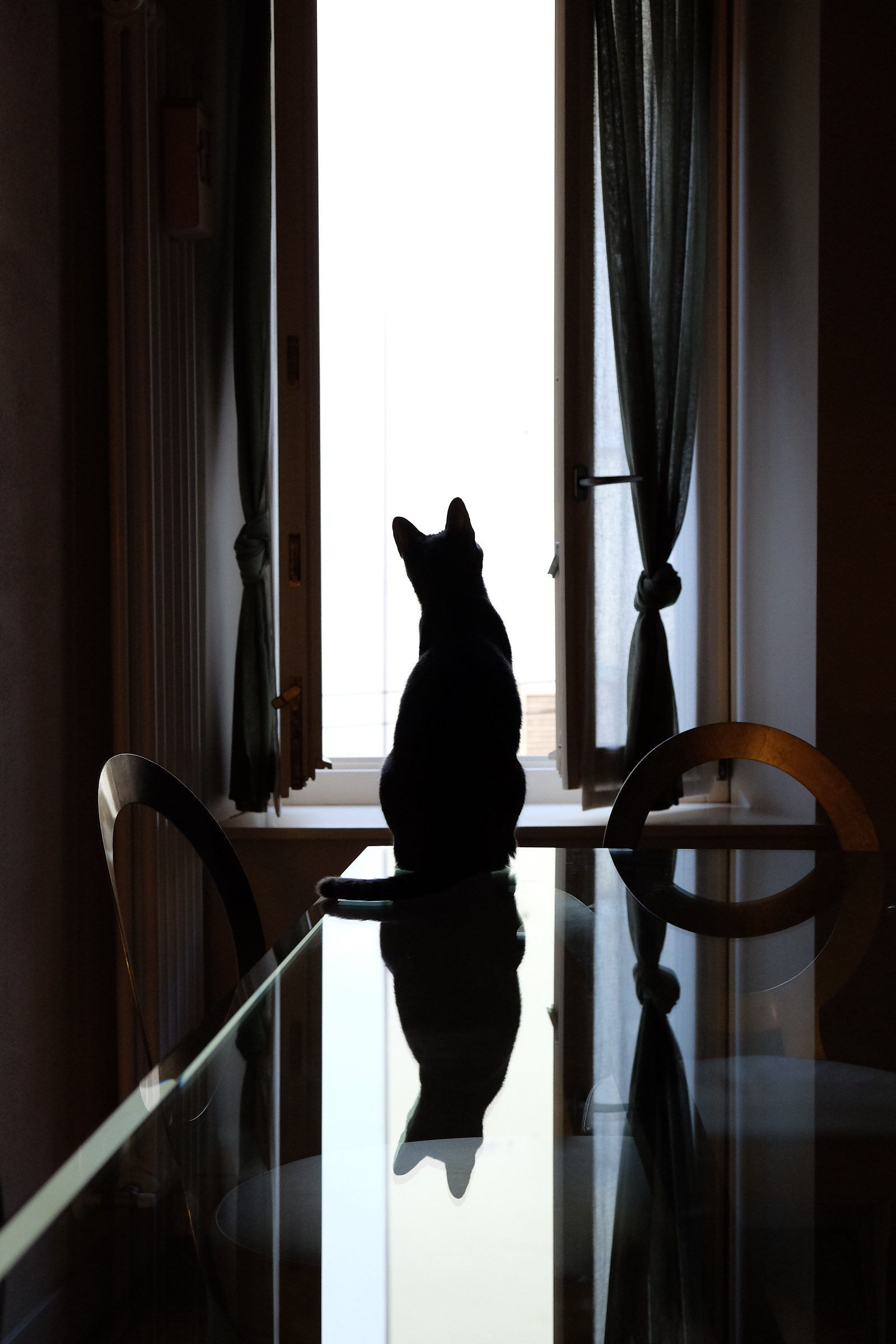 Observing the world ......