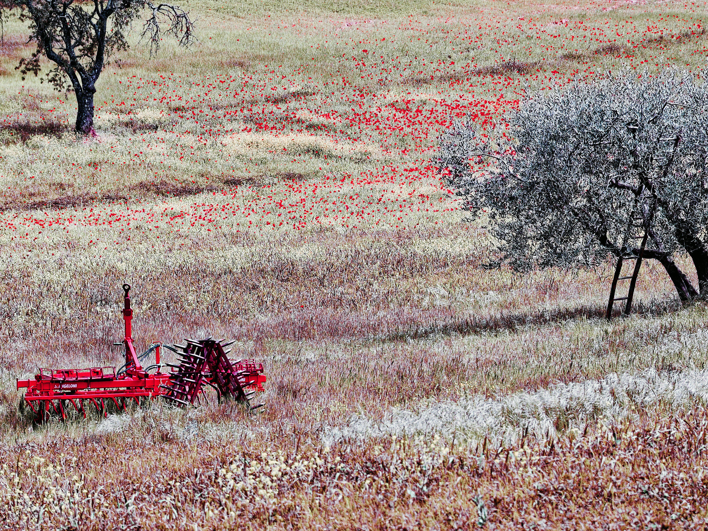 red plow...