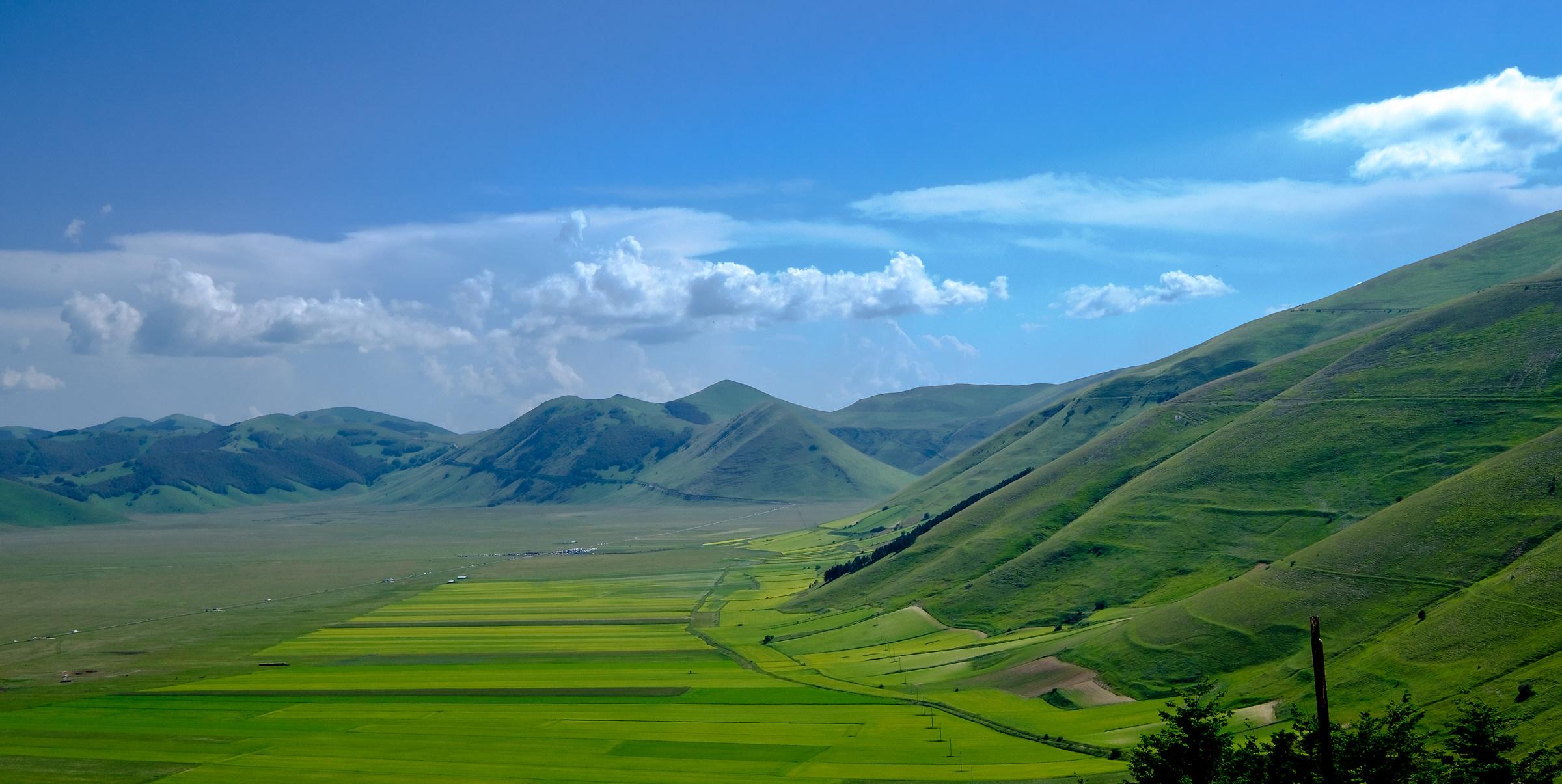 The green Flat...