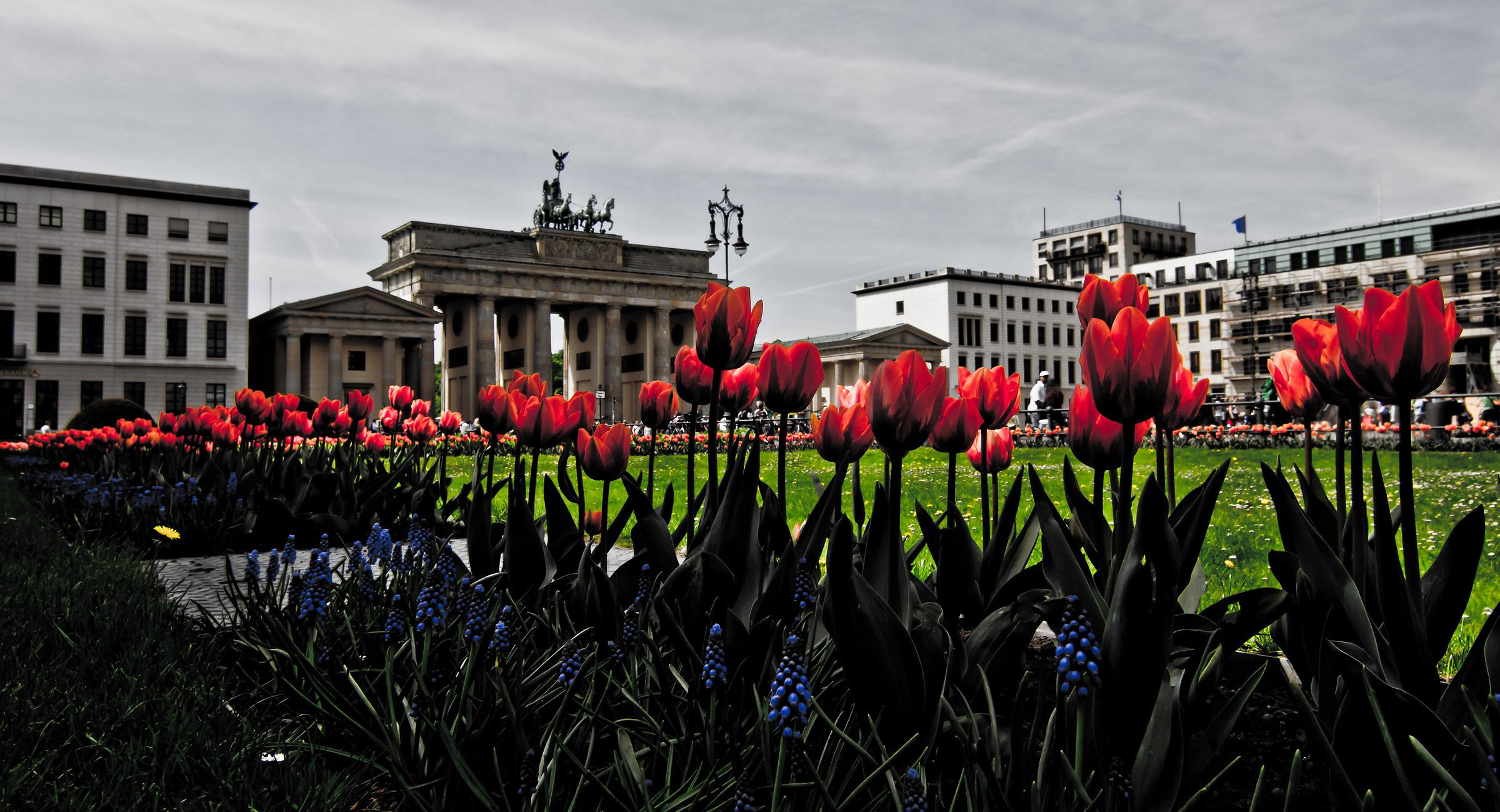 Berlin gate...