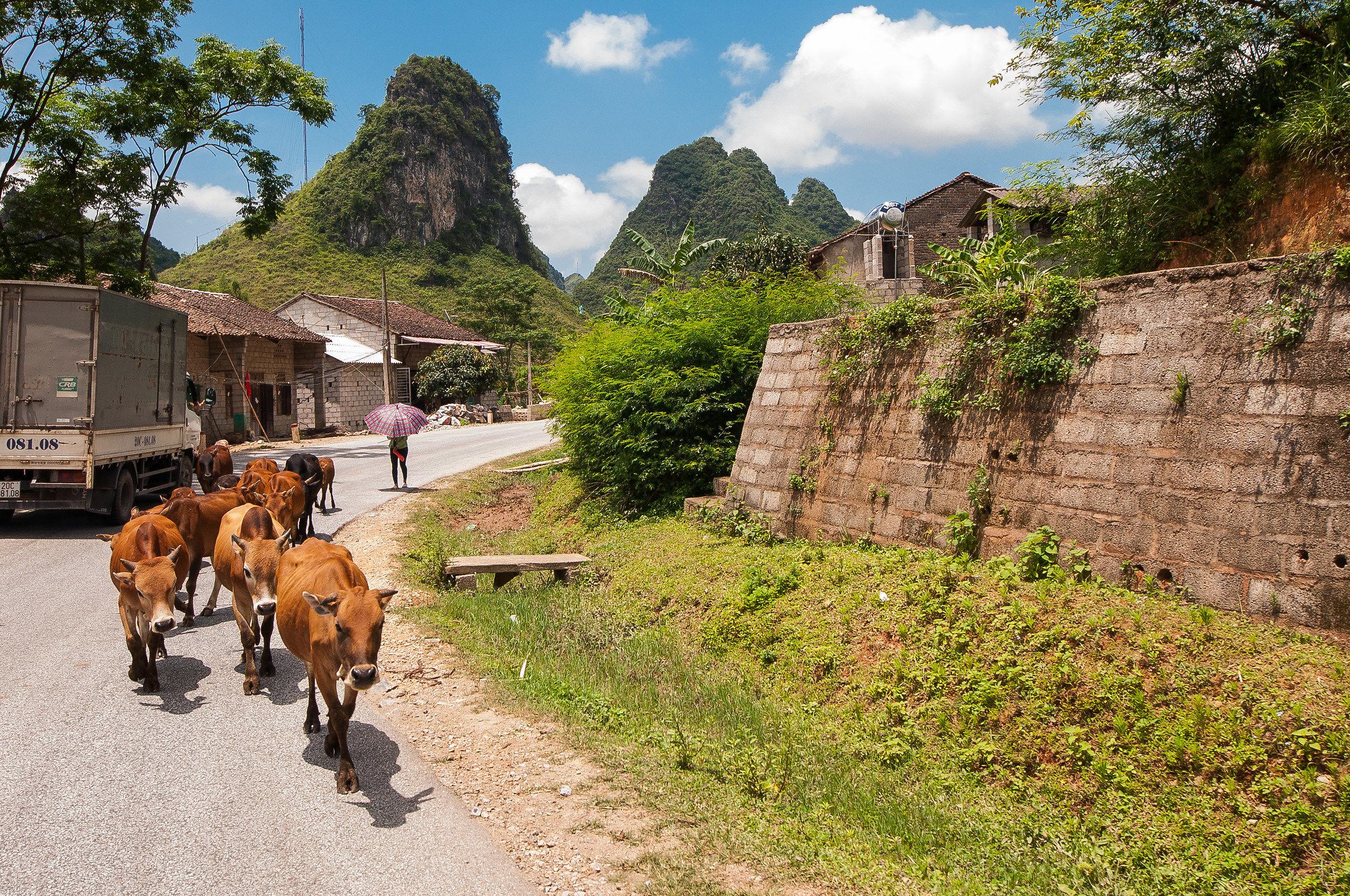 Cao Bang Region / Ban Gioc...