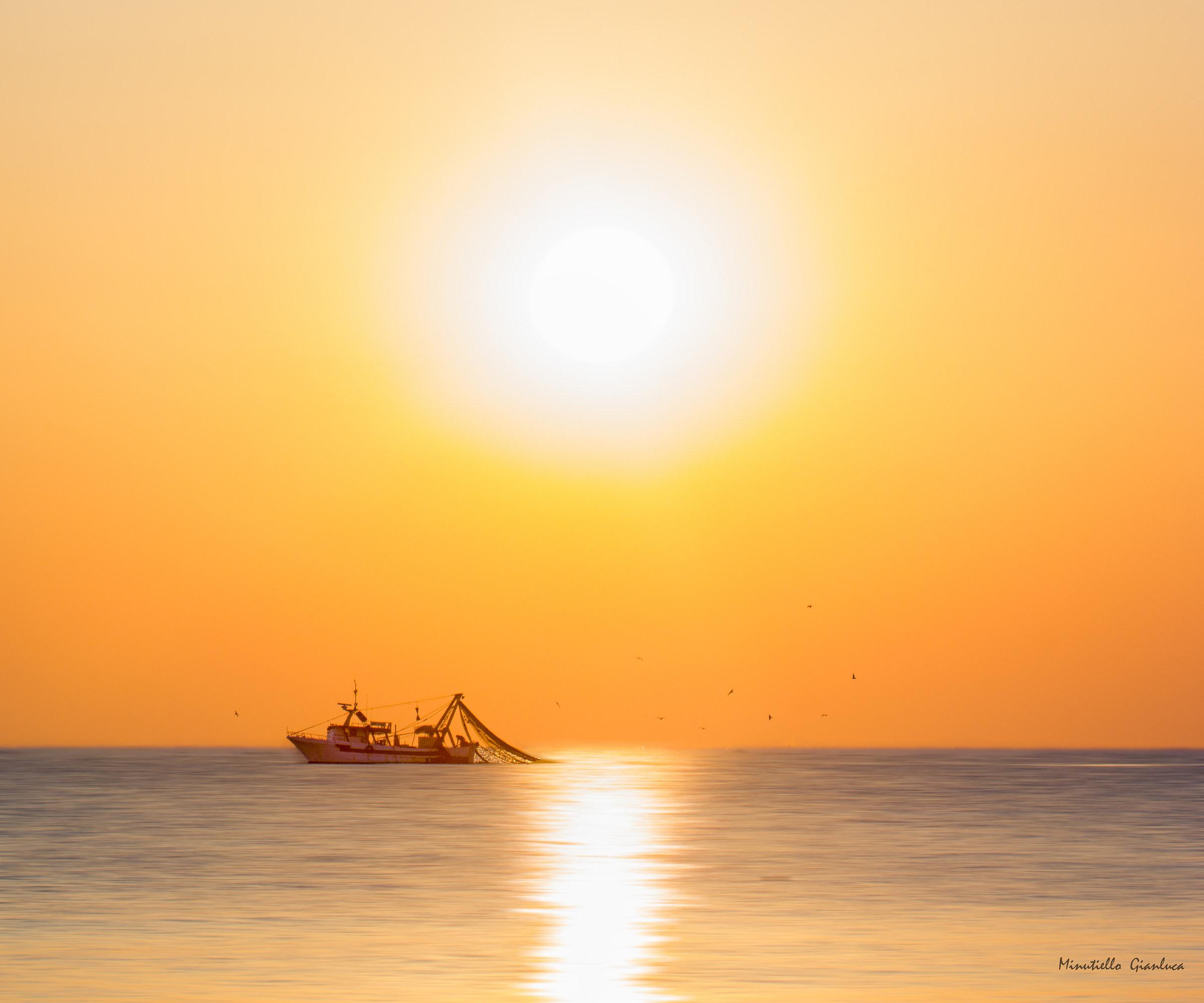 The fisherman dreams...