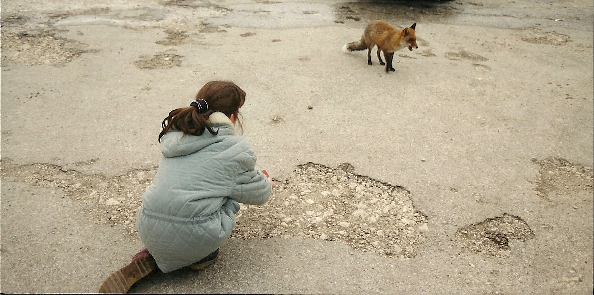 Sara and the Fox 01...