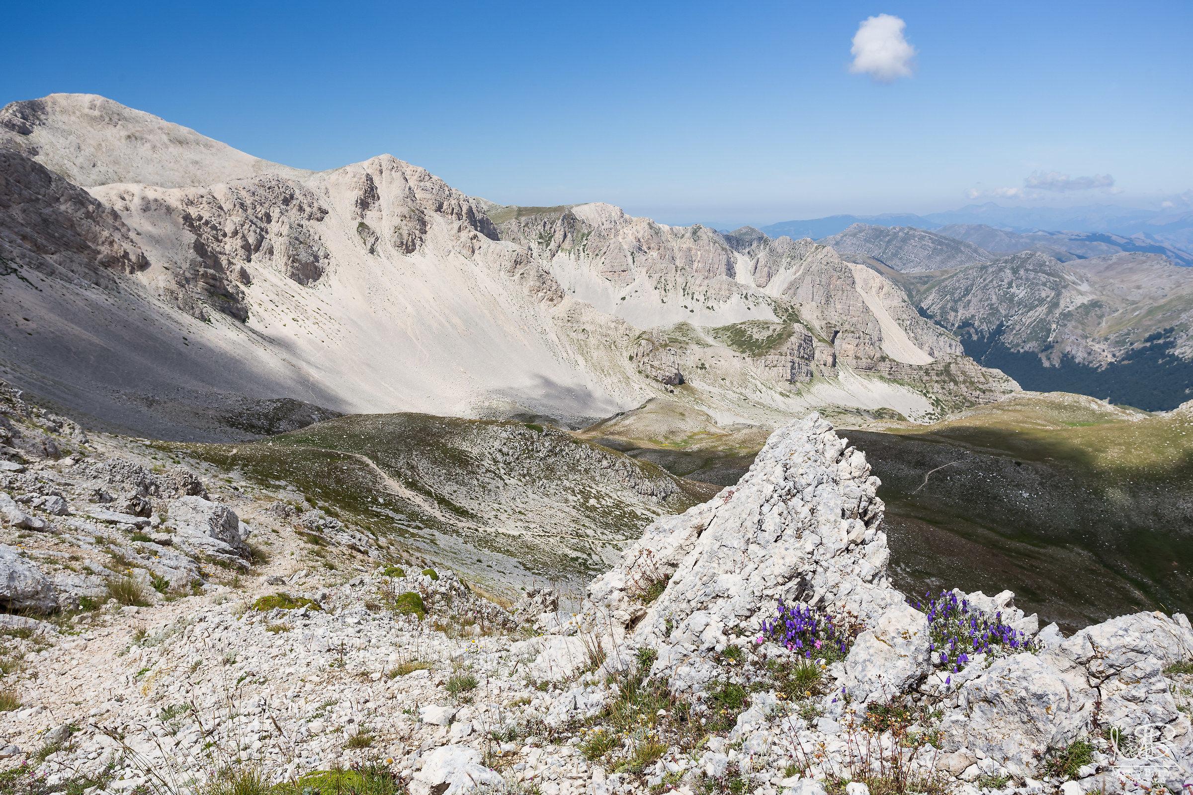 wild panorama...