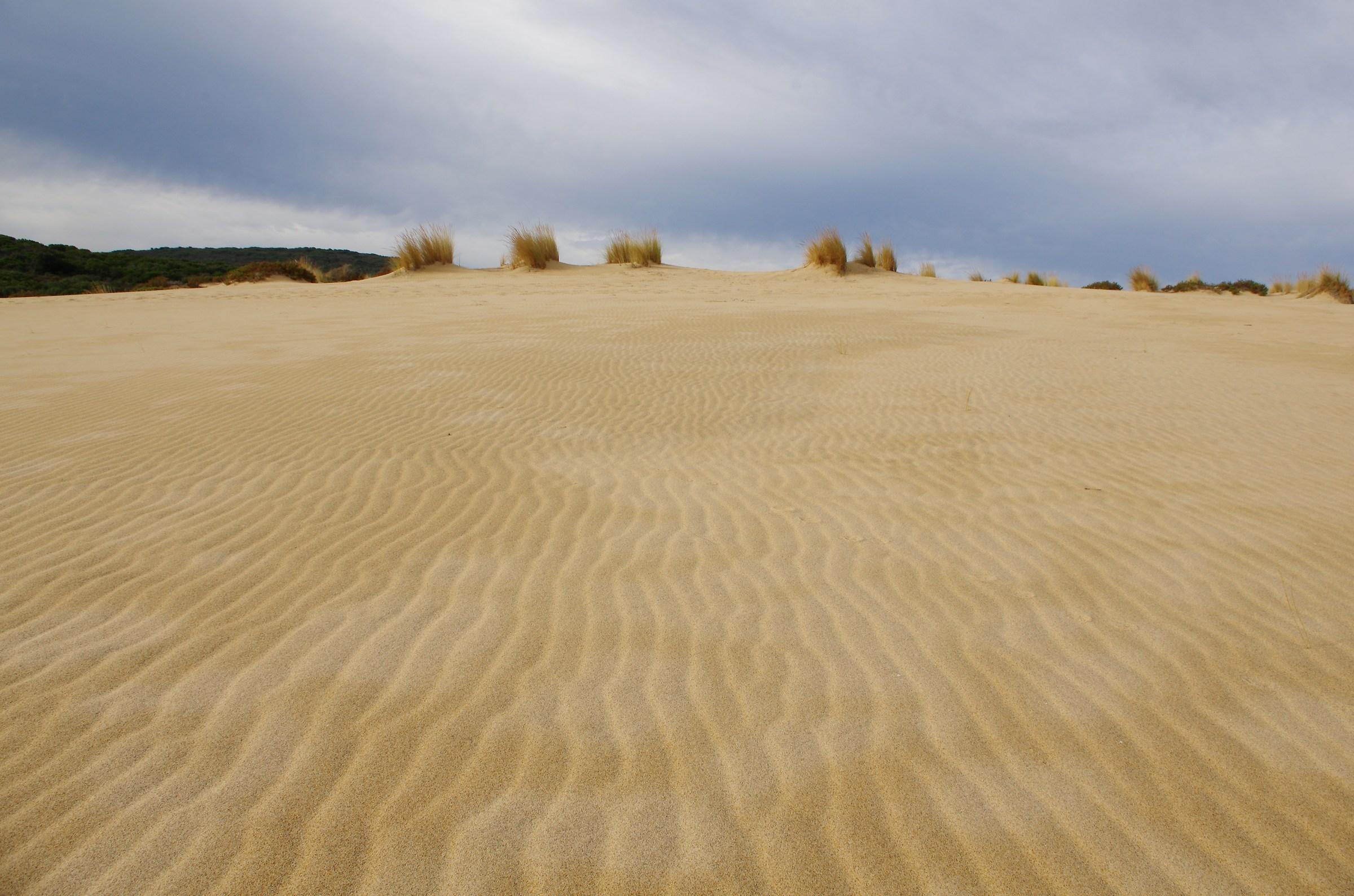 sand dunes, Piscinas (Arbus)...