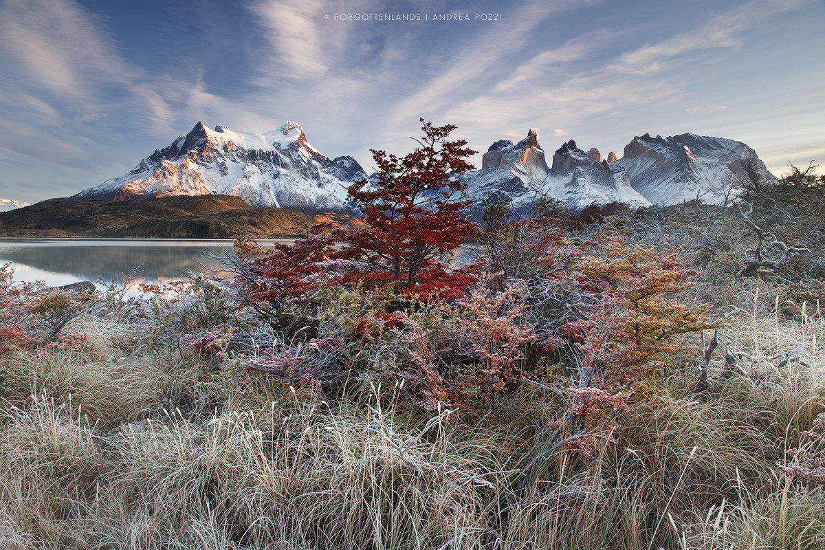 Frosty morning in Patagonia...