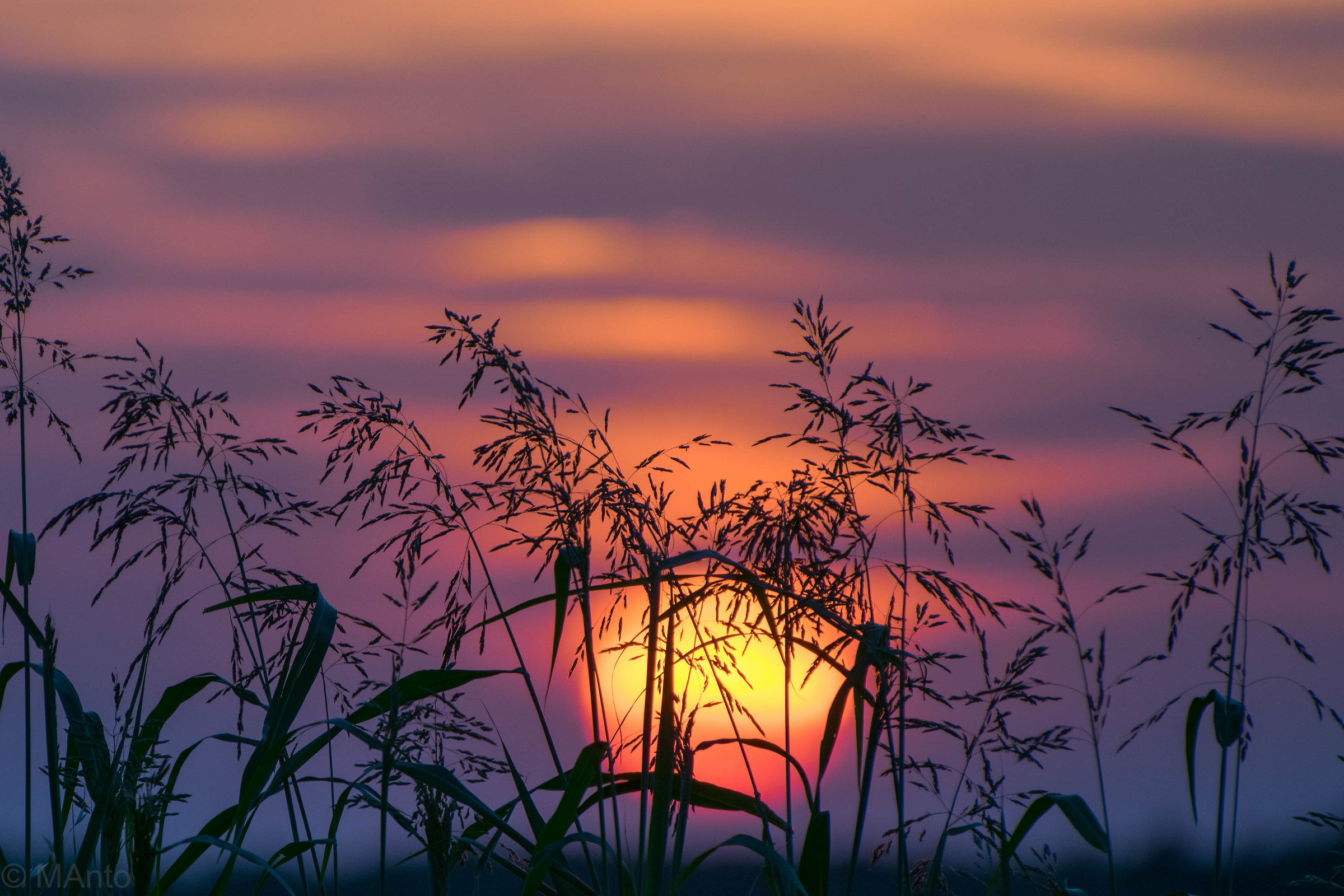 sunset in the countryside of Ferrara...