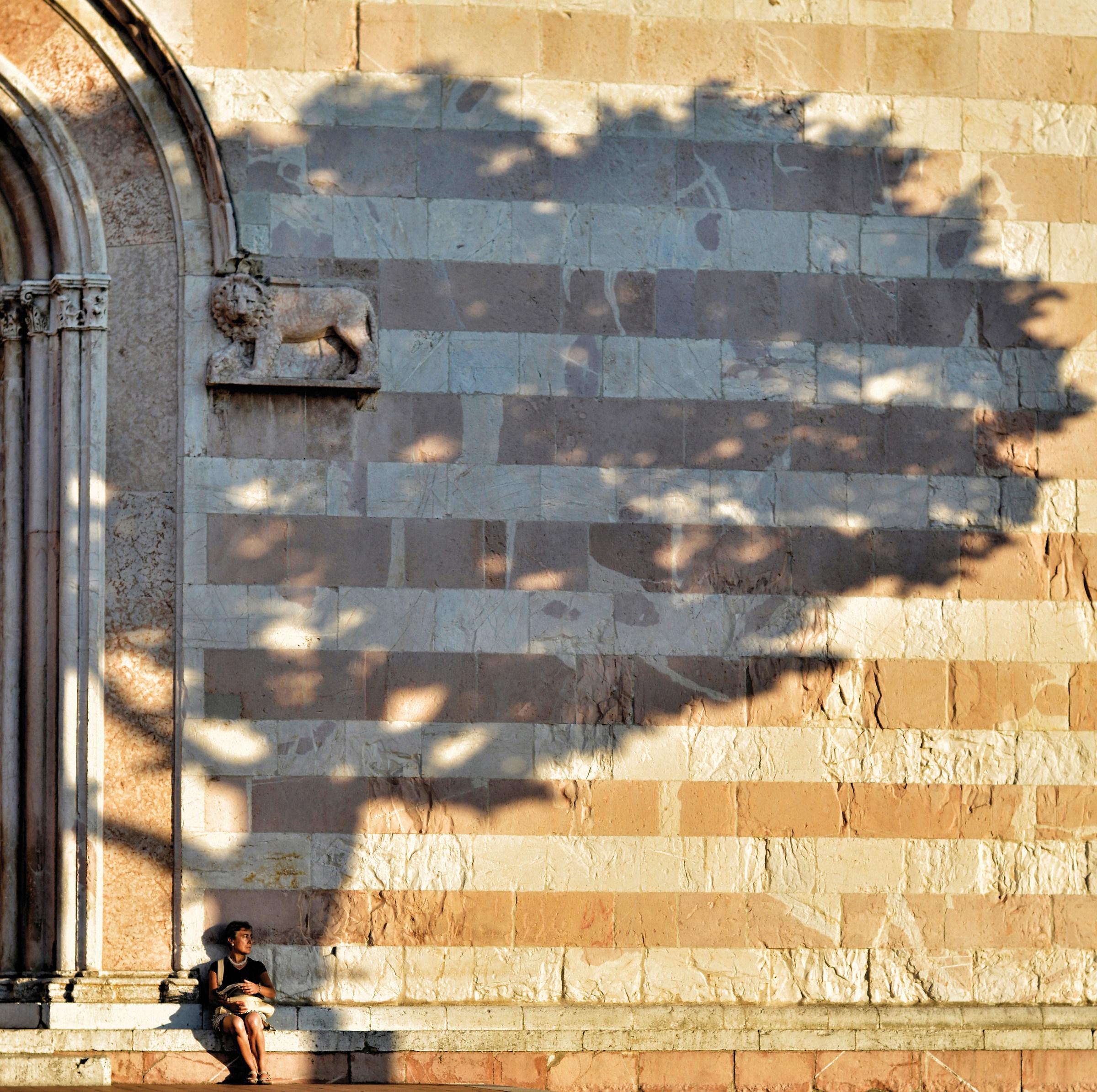 All'ombra  - Prima foto Juza...