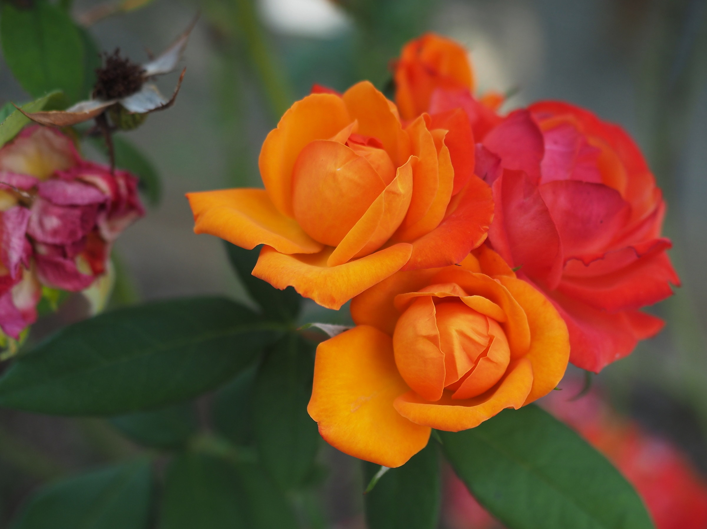 rose in September...