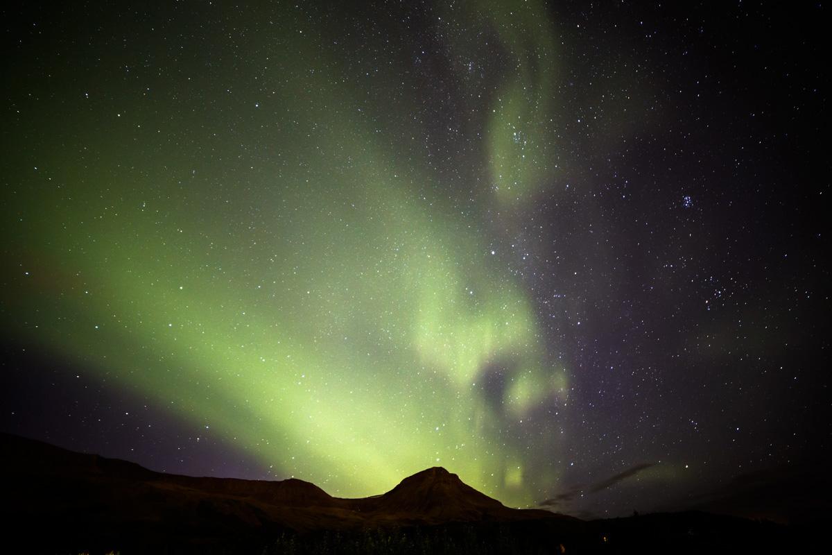 Before Aurora Borealis (the fly ...)...