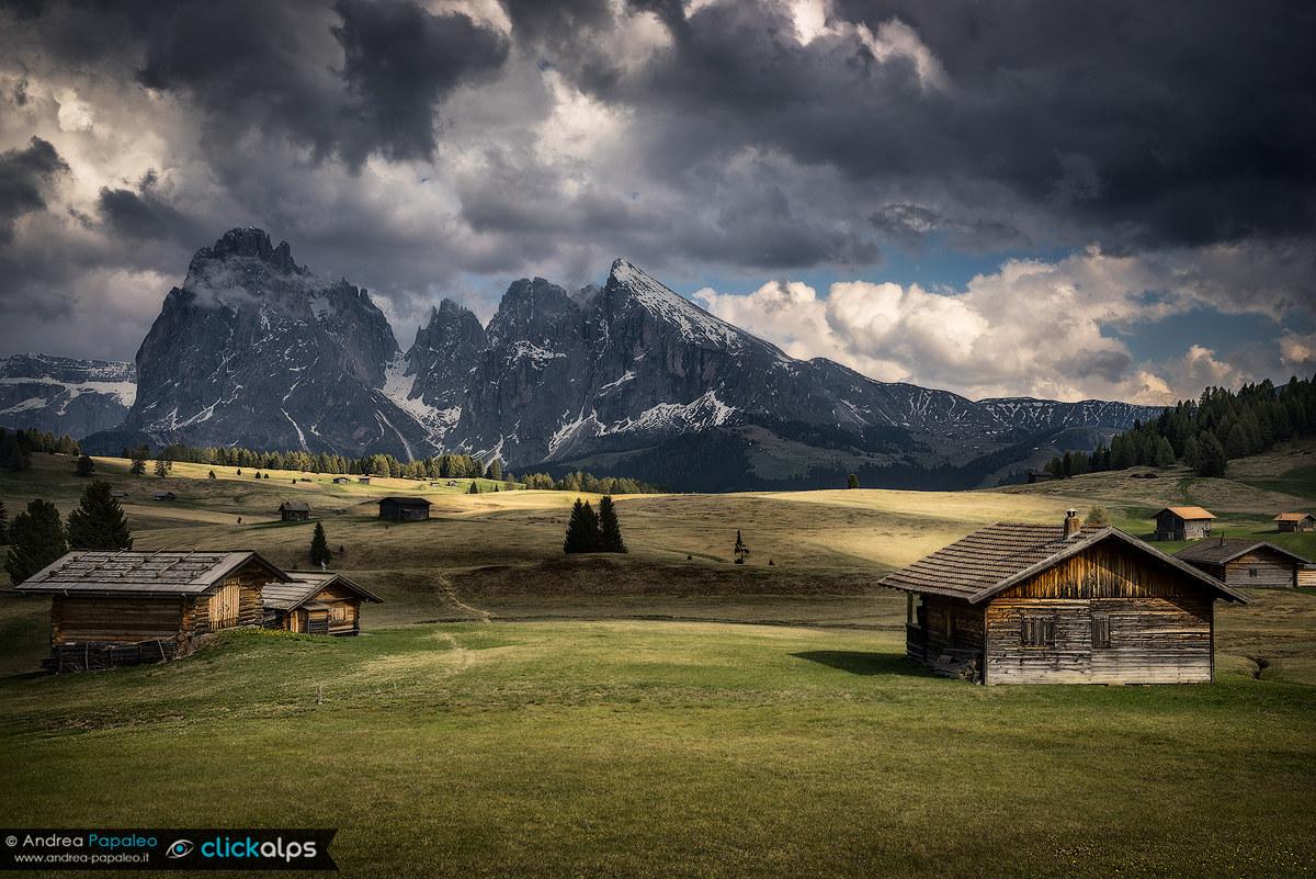 Seiser Alm / Alpe di Siusi...