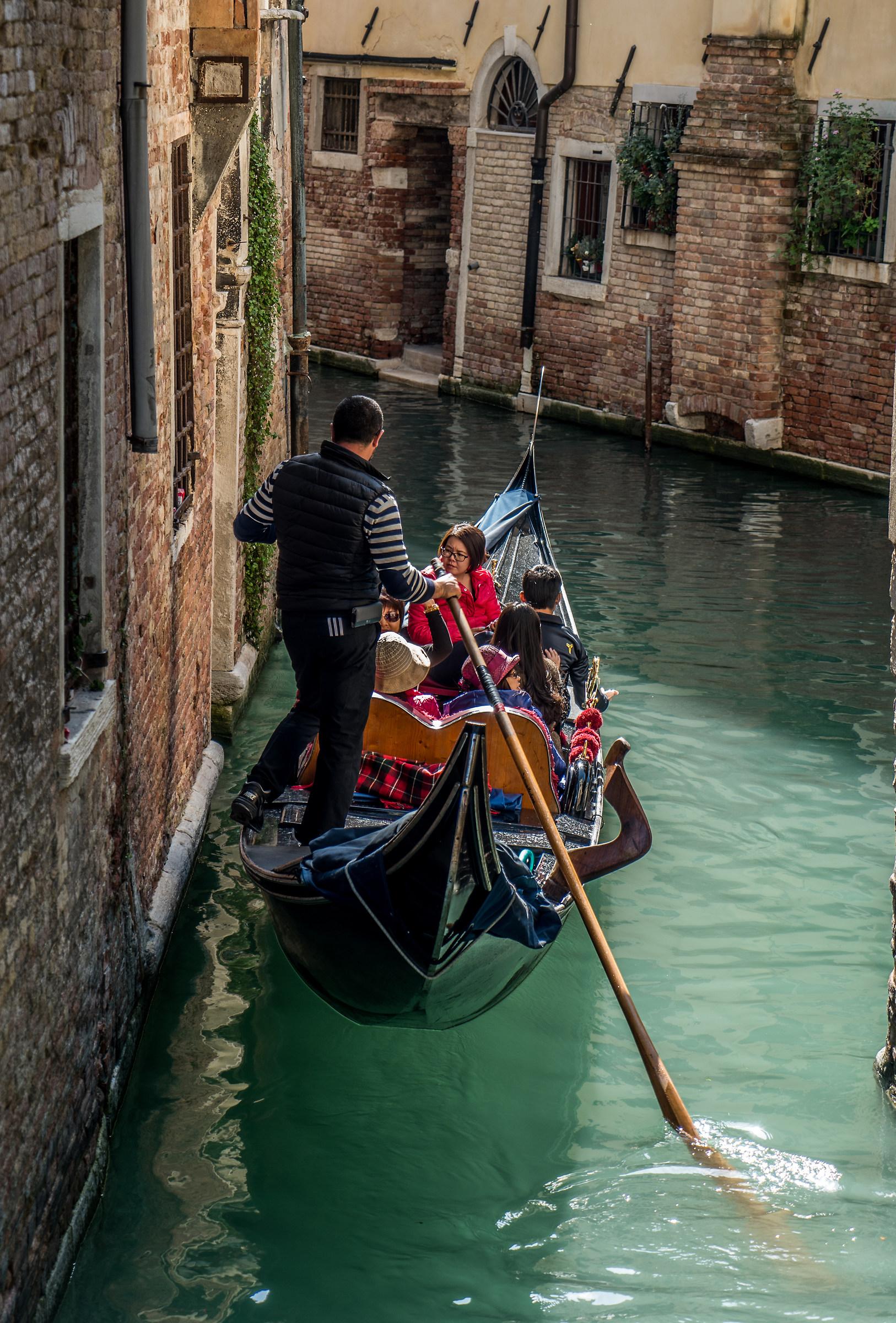 Venice 6...
