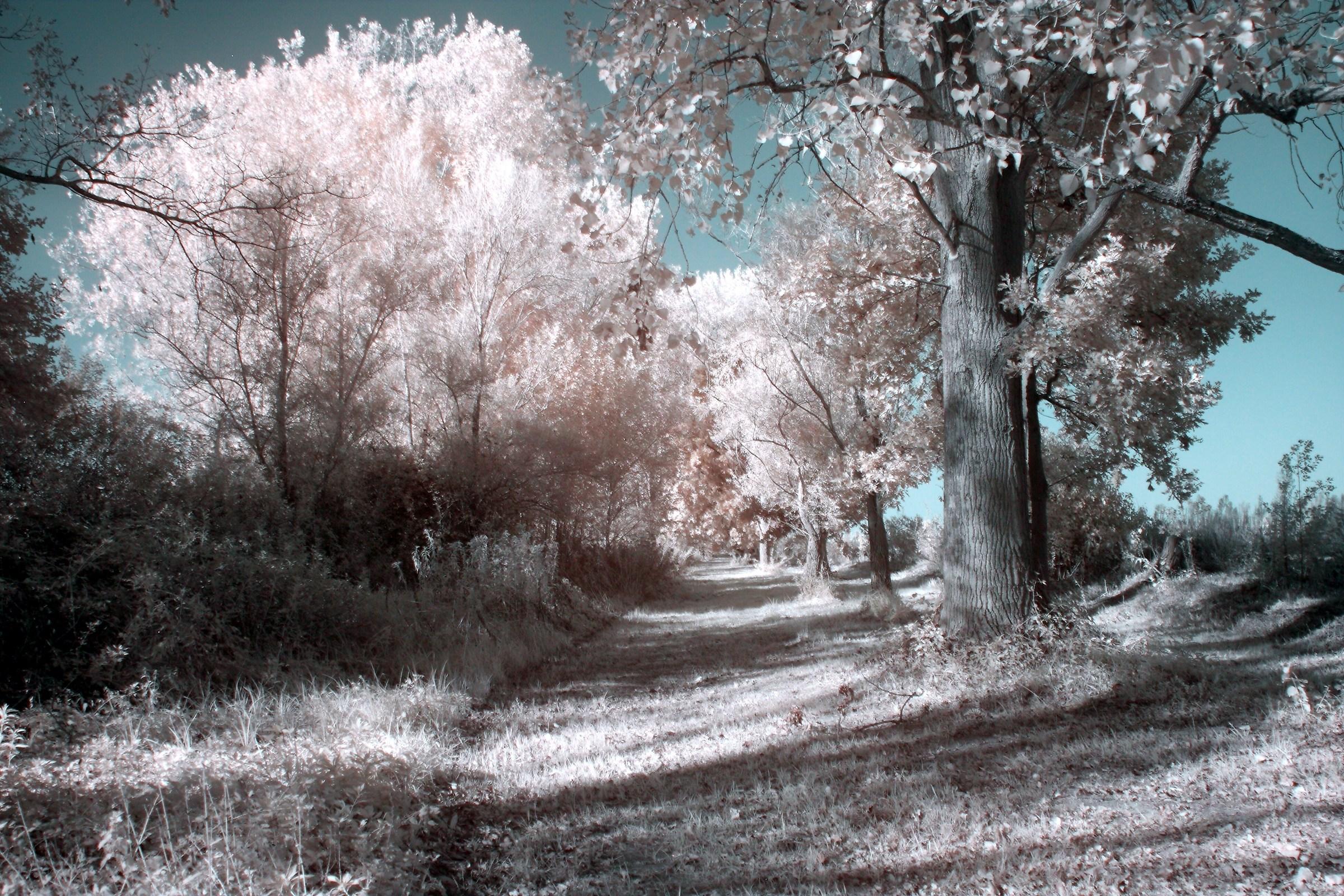 unreal avenue...