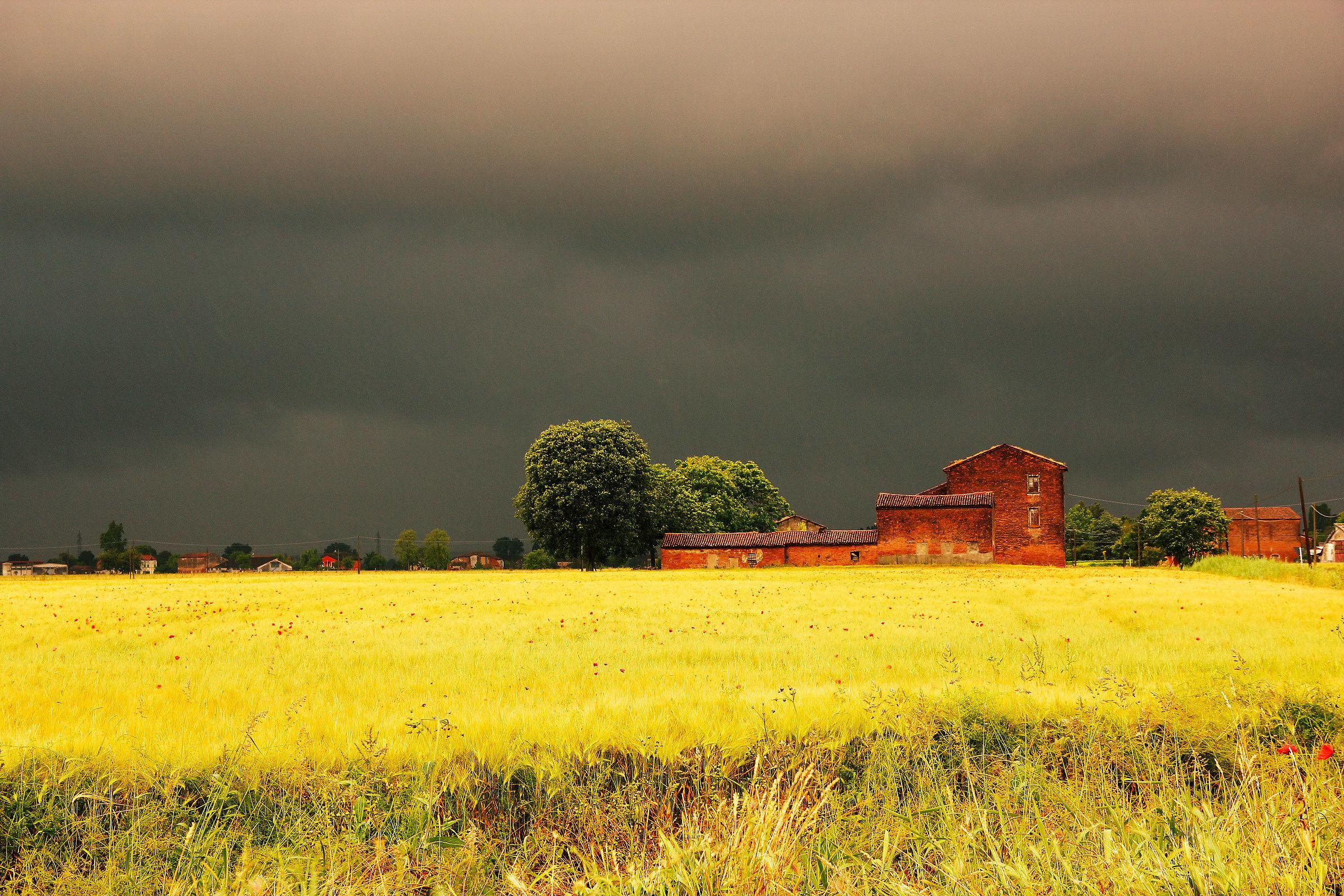 Summer rainstorm...