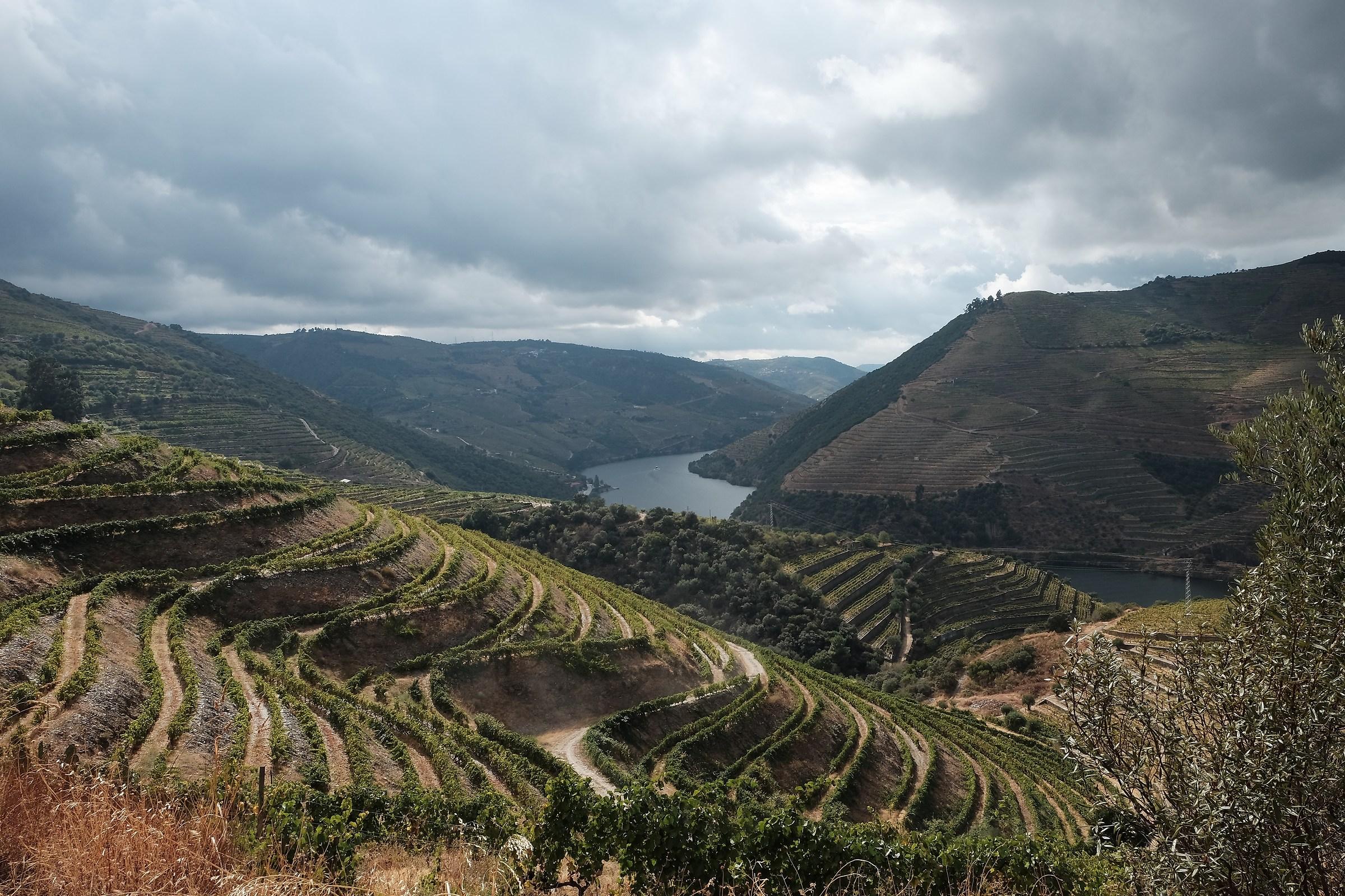 Douro valley...