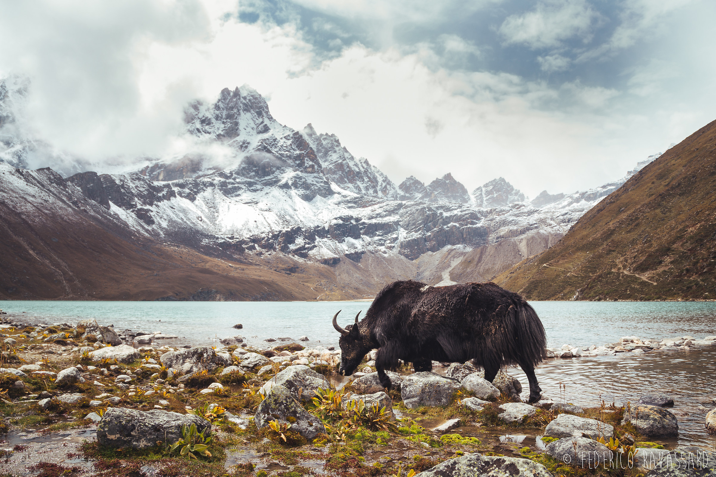 Land of the Yaks...