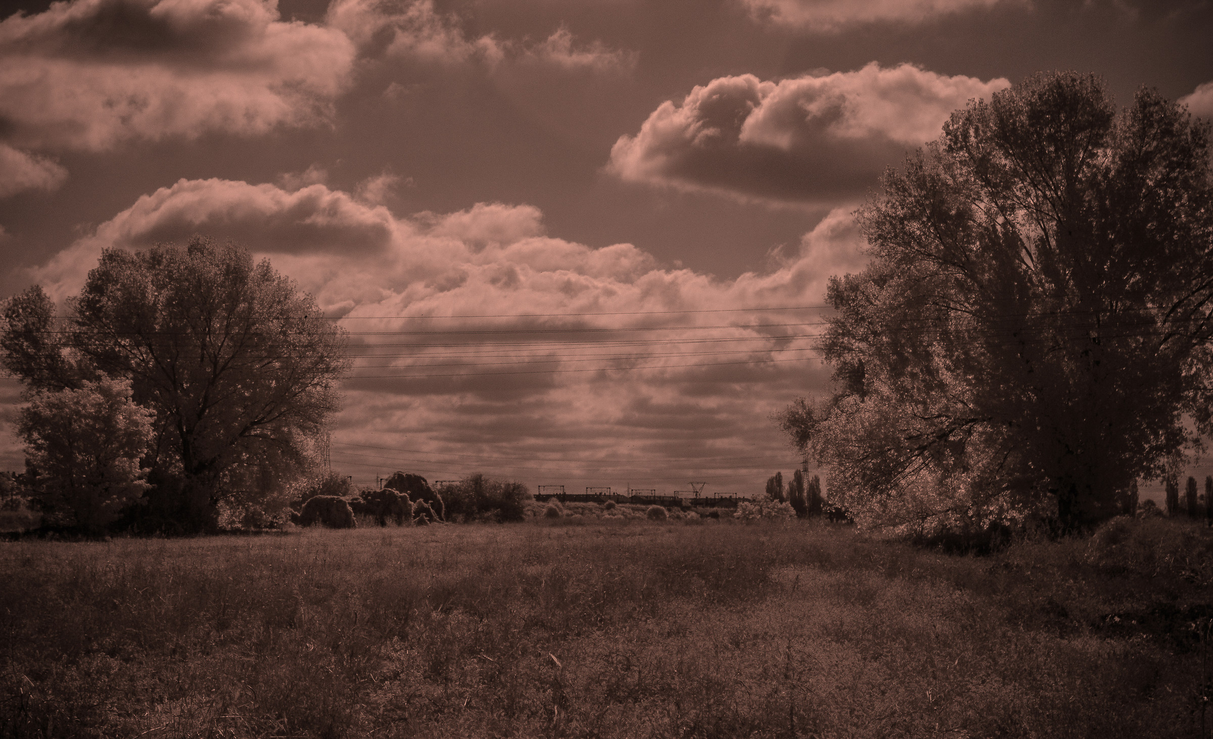 Infrared...