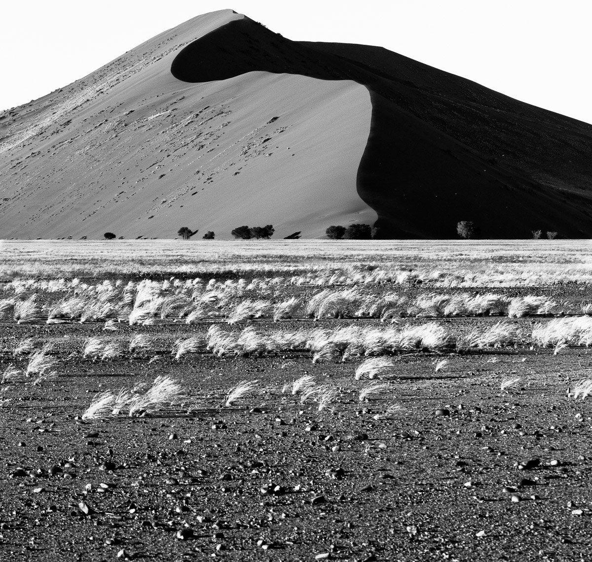 Dune in BN...