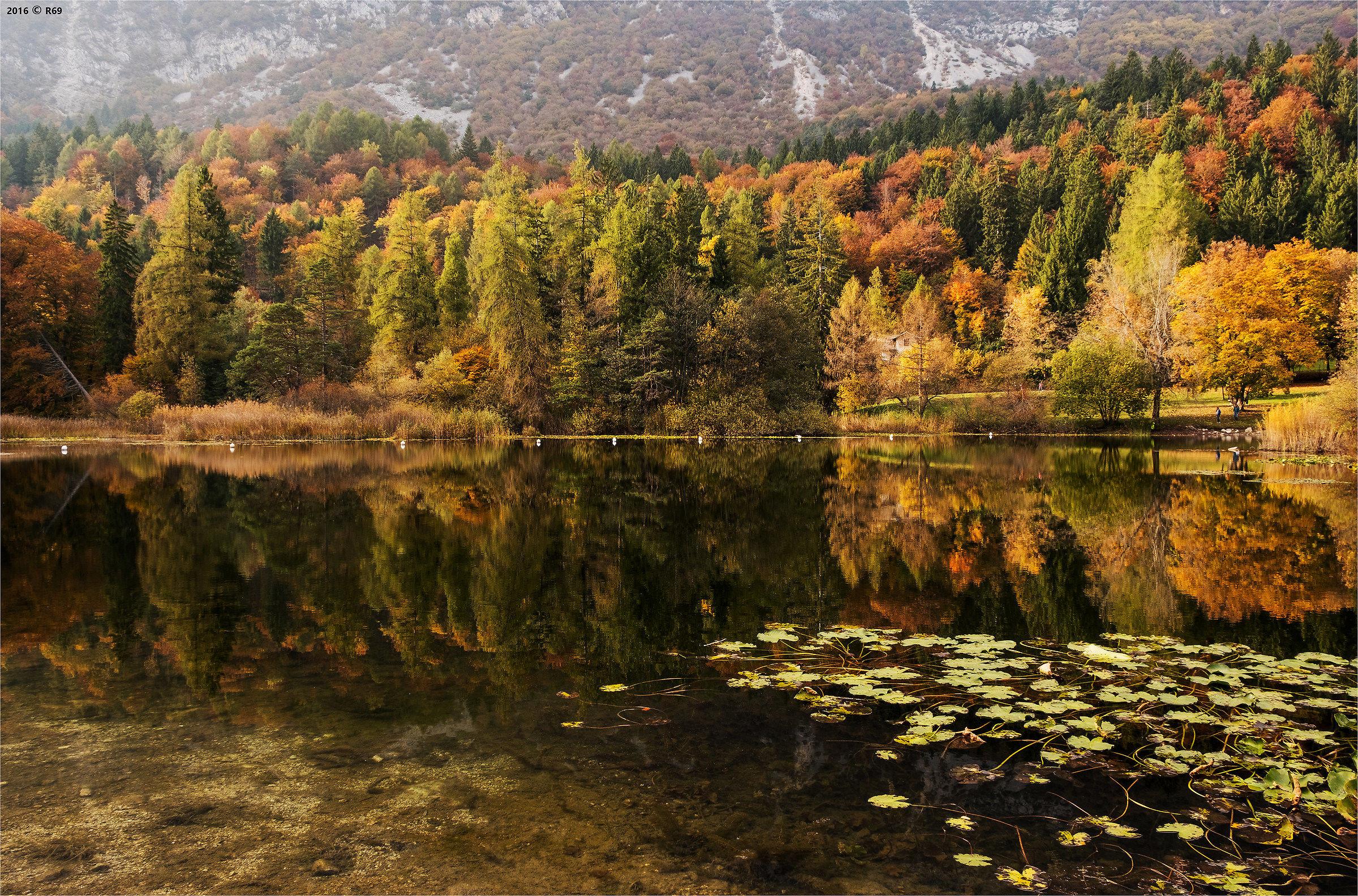 Autumn moment...